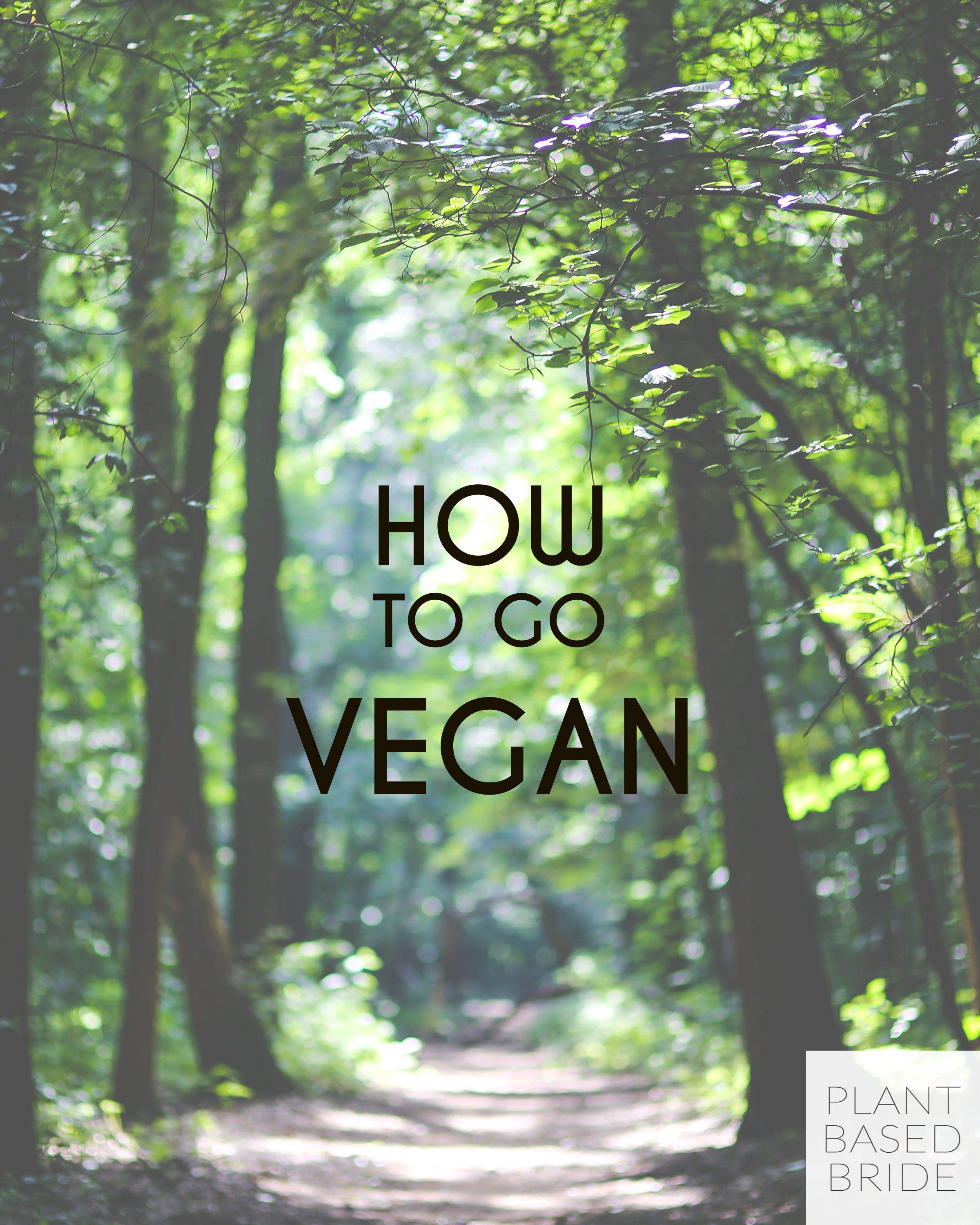 At a loss for how to transition to veganism?  Let me help you by sharing my tips and tricks for going vegan!  Learn how to go vegan at plantbasedbride.com!