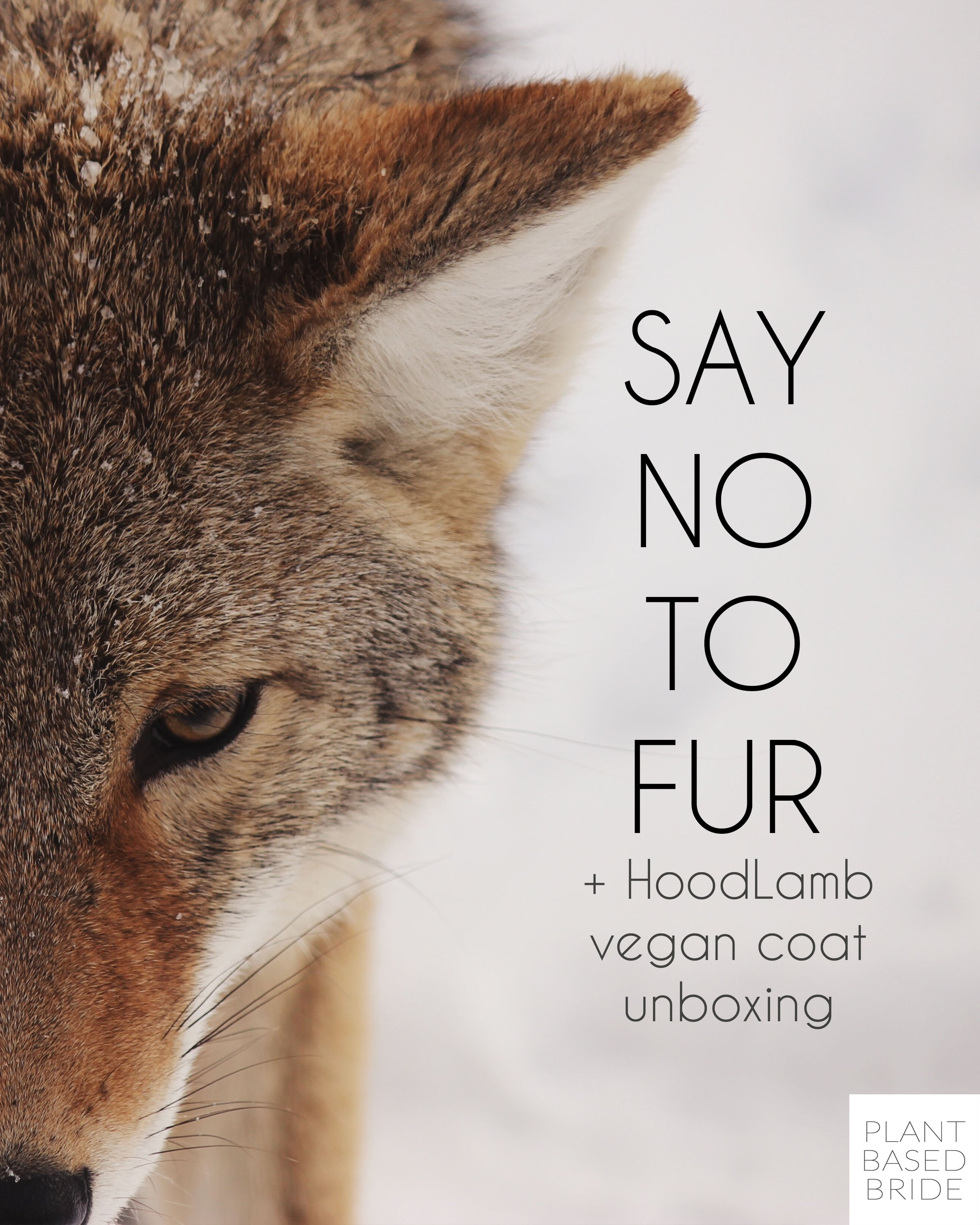 Say no to fur this winter.  Learn ten facts about the fur industry and check out my HoodLamb Parka vegan coat unboxing video!