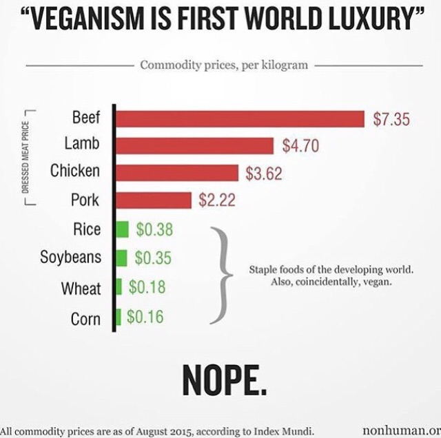 Veganism is not more expensive than the Standard American Diet. // Plant Based Bride
