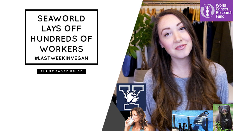 #LastWeekInVegan Seaworld Lays Off Hundreds of Workers