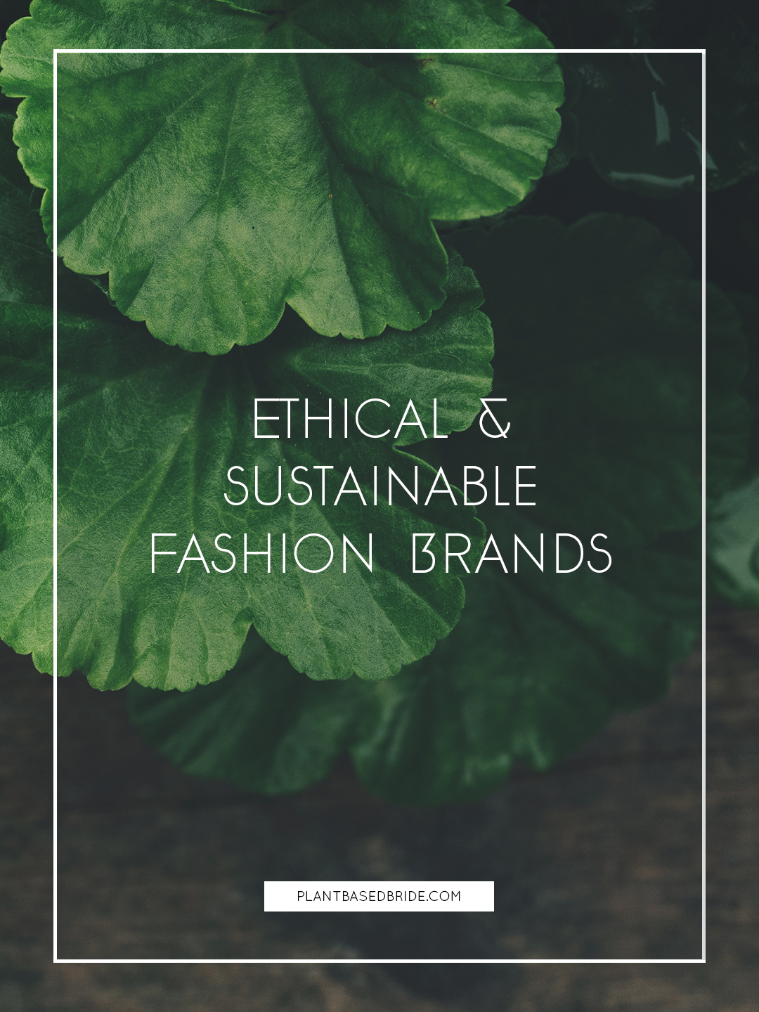Ethical & Sustainable Fashion Brands // Plant Based Bride