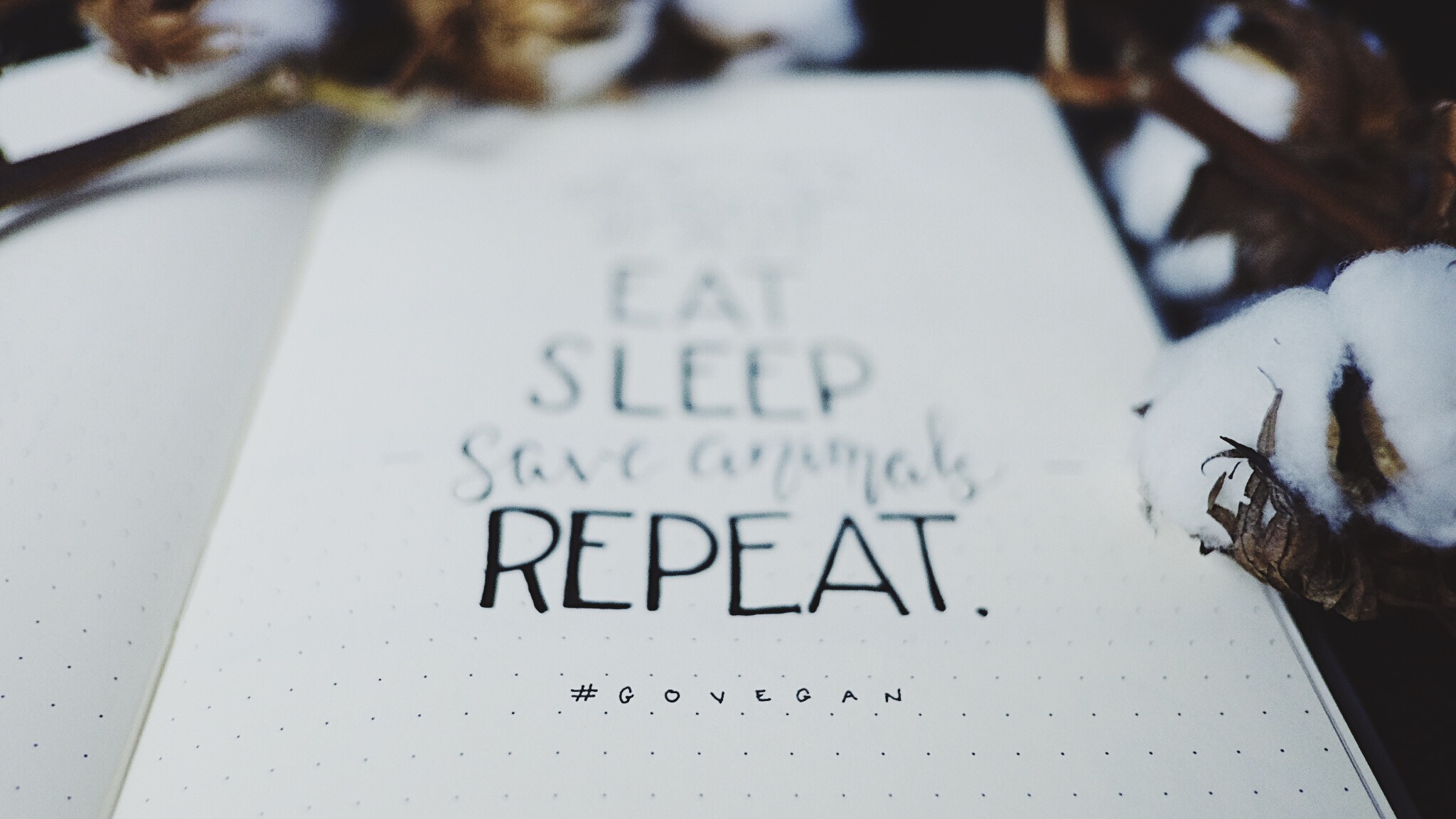 April 2018 Bullet Journal Minimalist Theme Eat Sleep Save Animals Repeat #GoVegan // Plant Based Bride