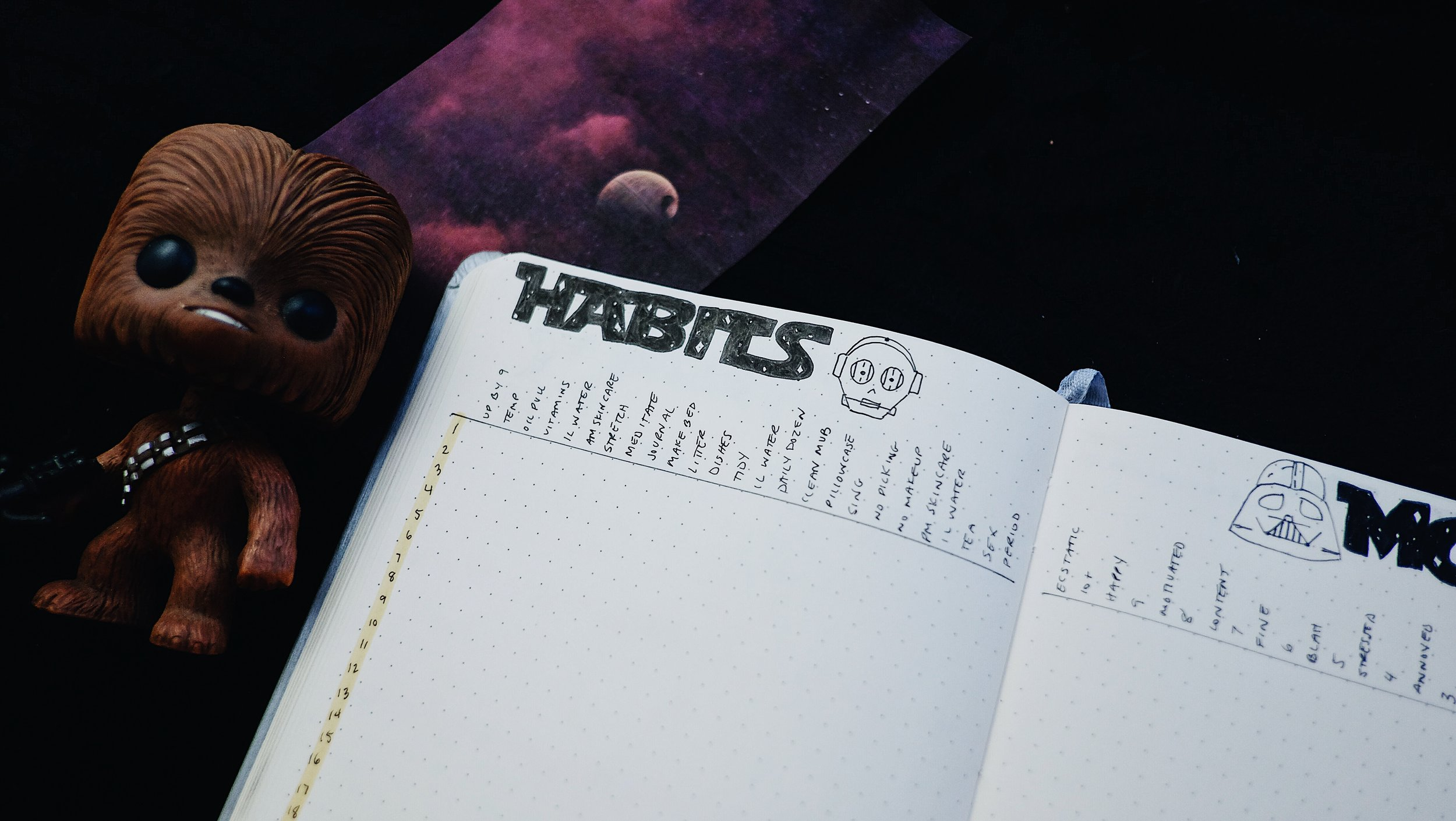 May 2018 Bullet Journal Star Wars Theme Habits & Moods Spread // Plant Based Bride