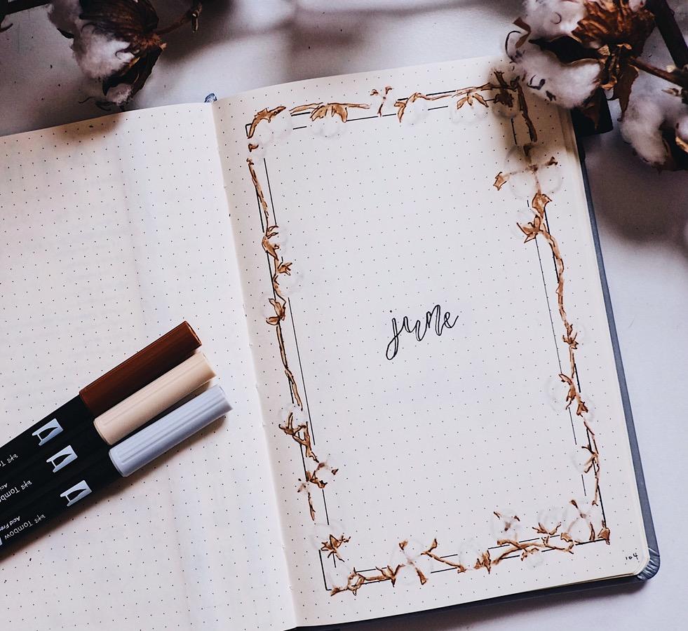 June 2018 Bullet Journal Simple Cotton Theme // Plant Based Bride
