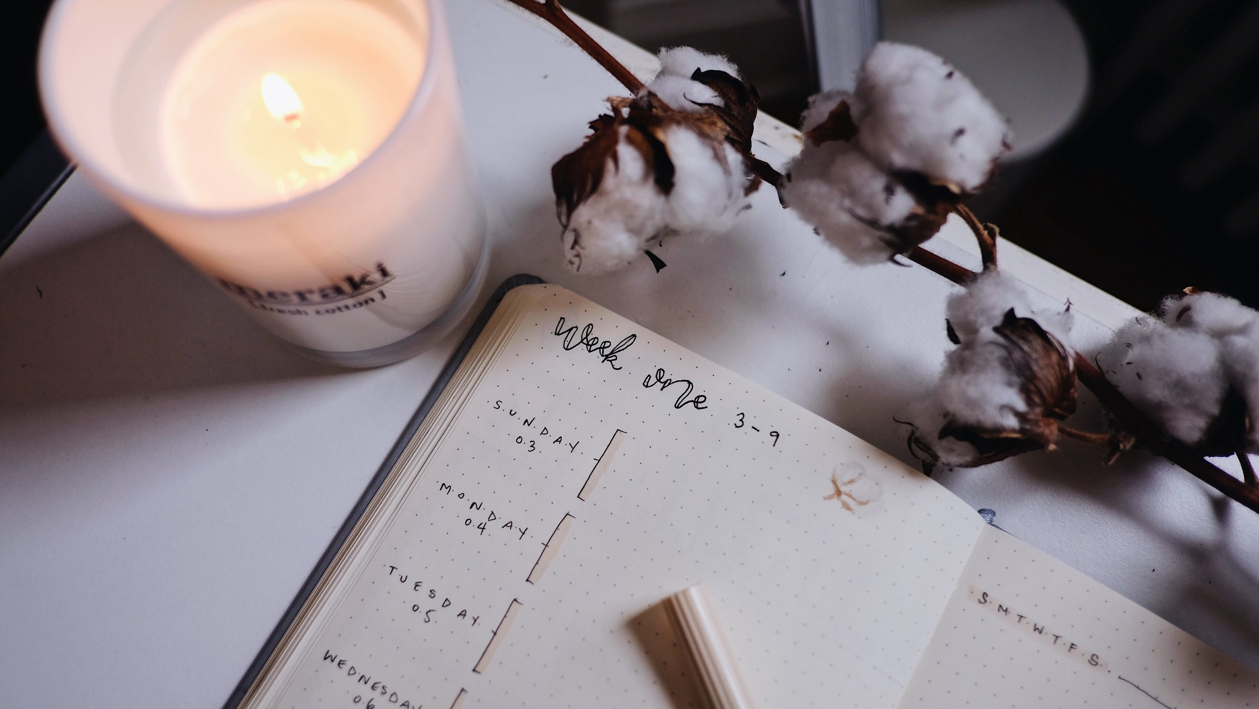 June 2018 Bullet Journal Simple Cotton Theme Weekly // Plant Based Bride