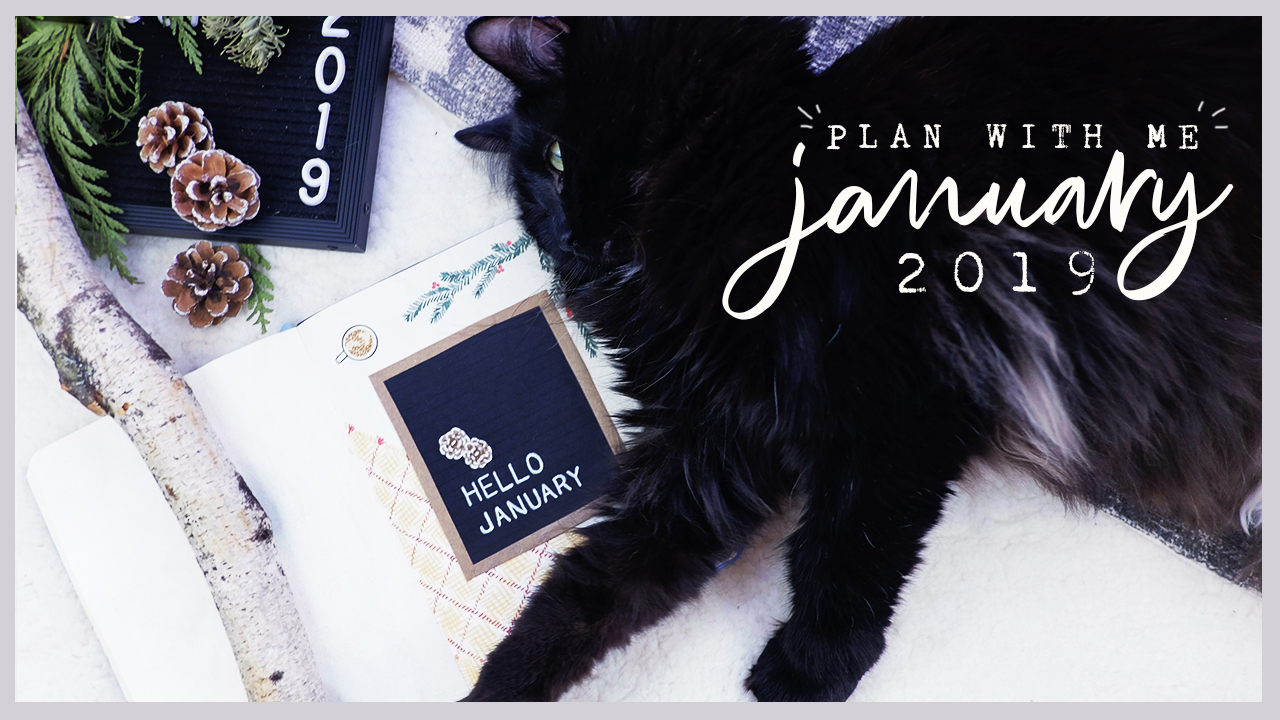 January 2019 Bullet Journal Plan With Me | Plant Based Bride