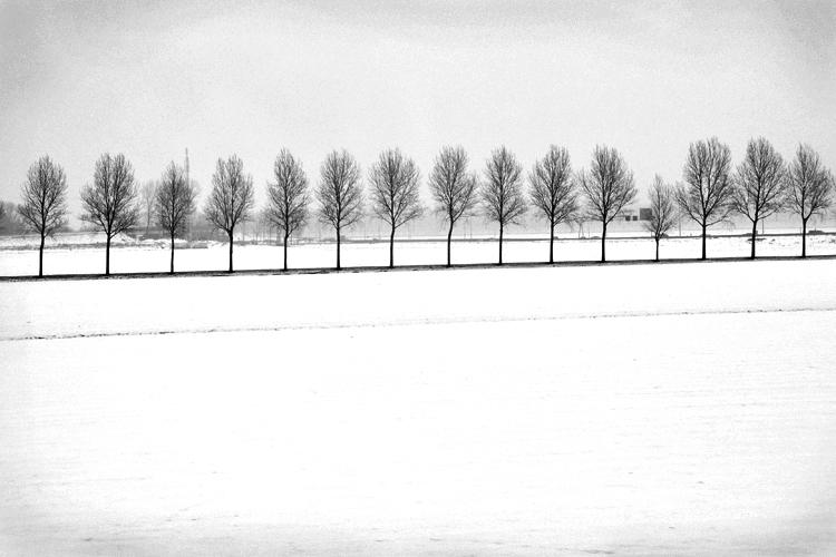 winter_5537723249_o.jpg