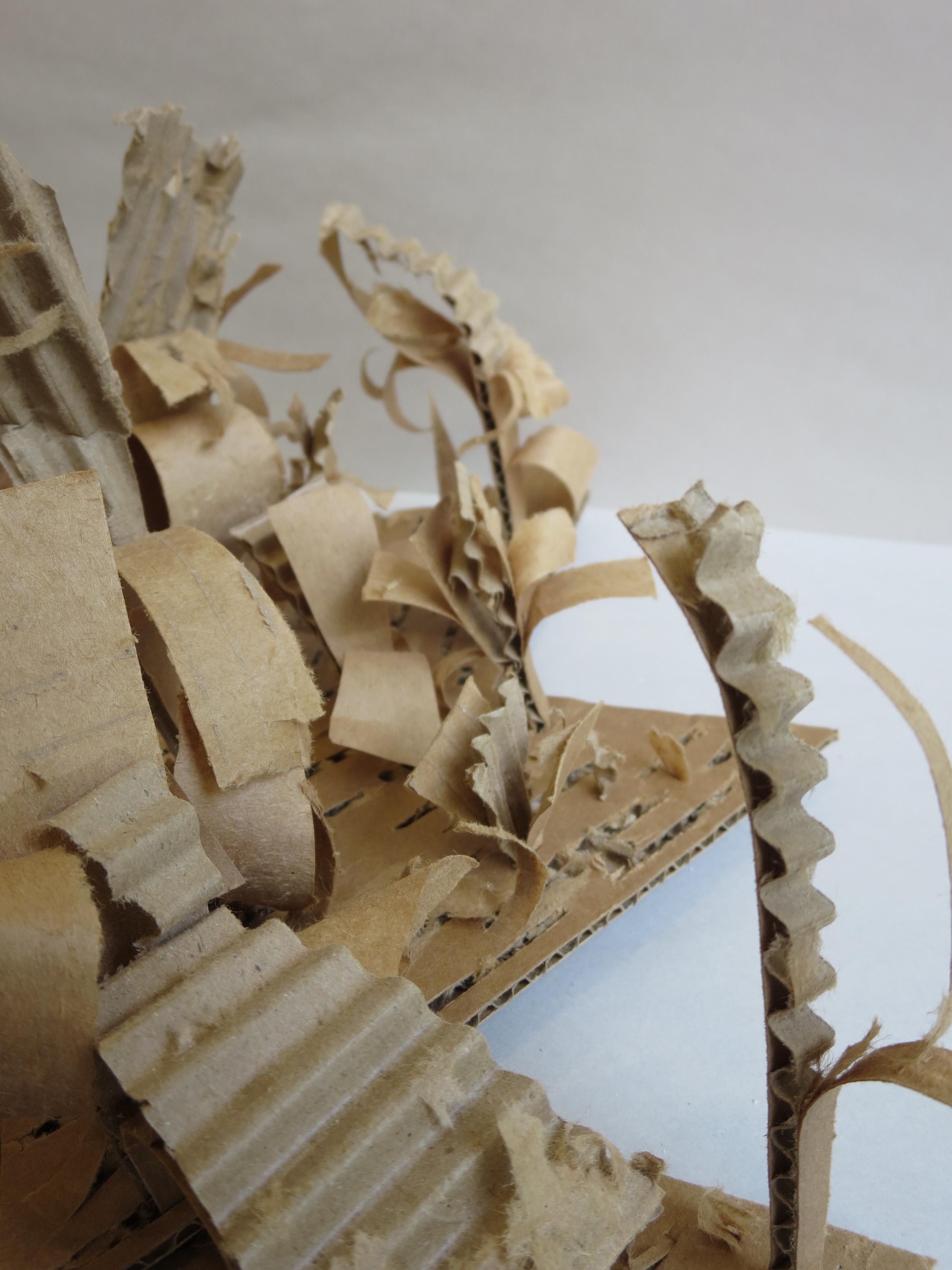 cardboard 6.JPG