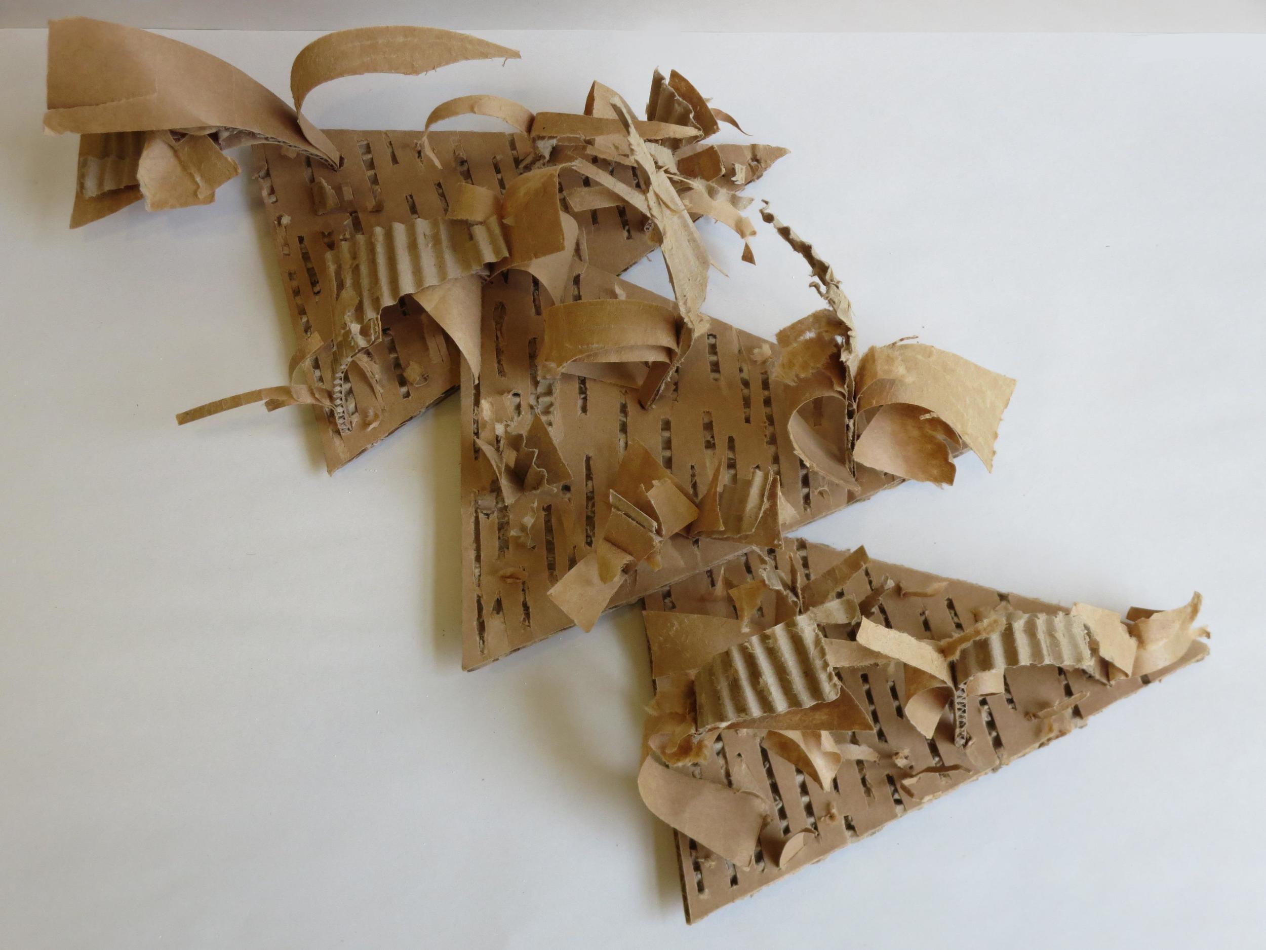 cardboard 2.JPG