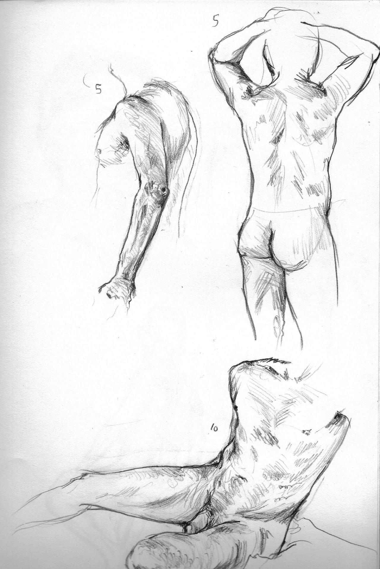 figure drawing study  5, 5, & 10 mins  2014
