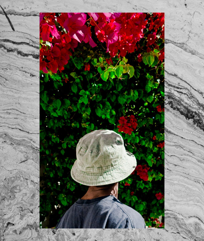 Robert LeBlanc for Animals Mag_ KNX 2.jpg