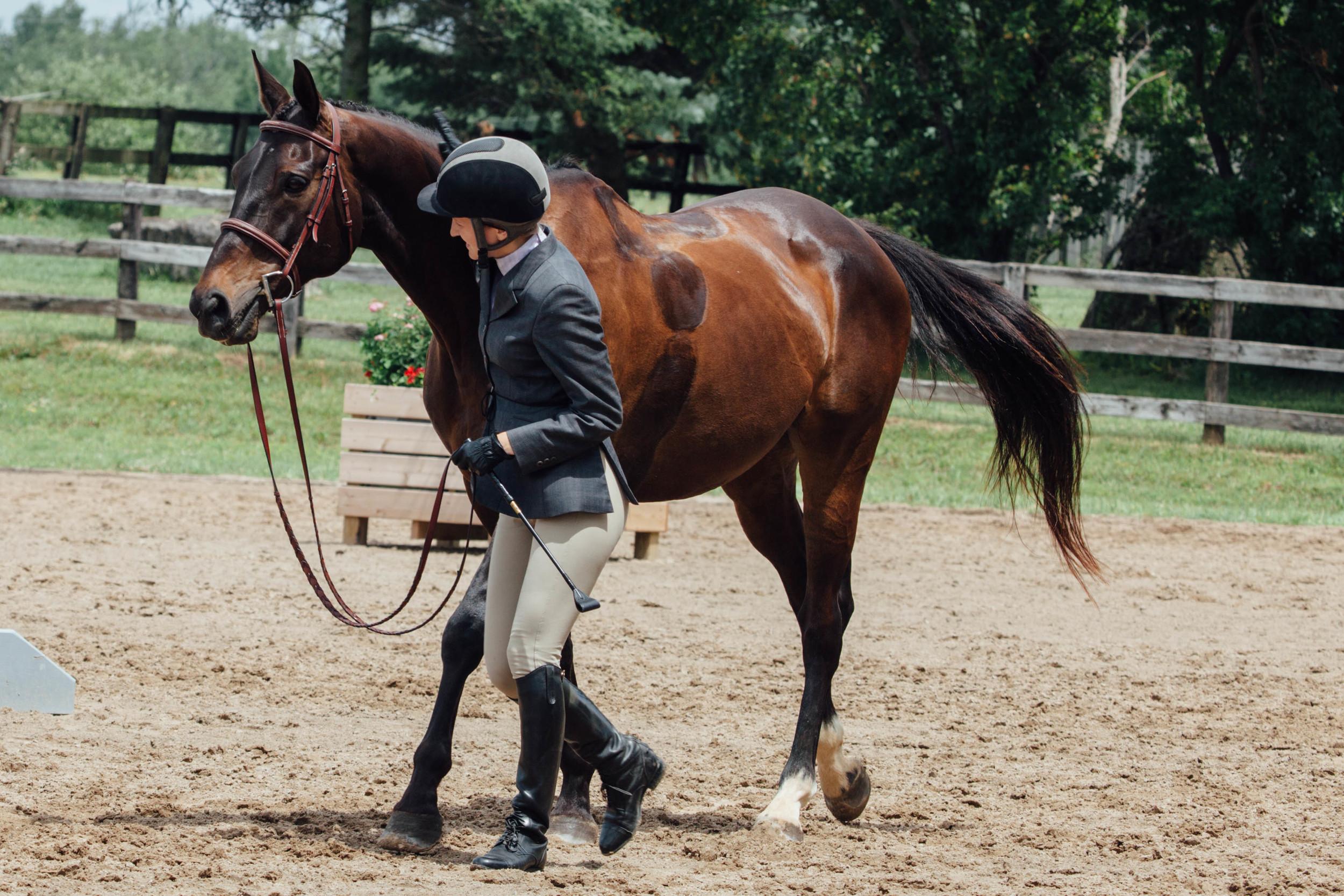 vsco edit horse show-7.jpg