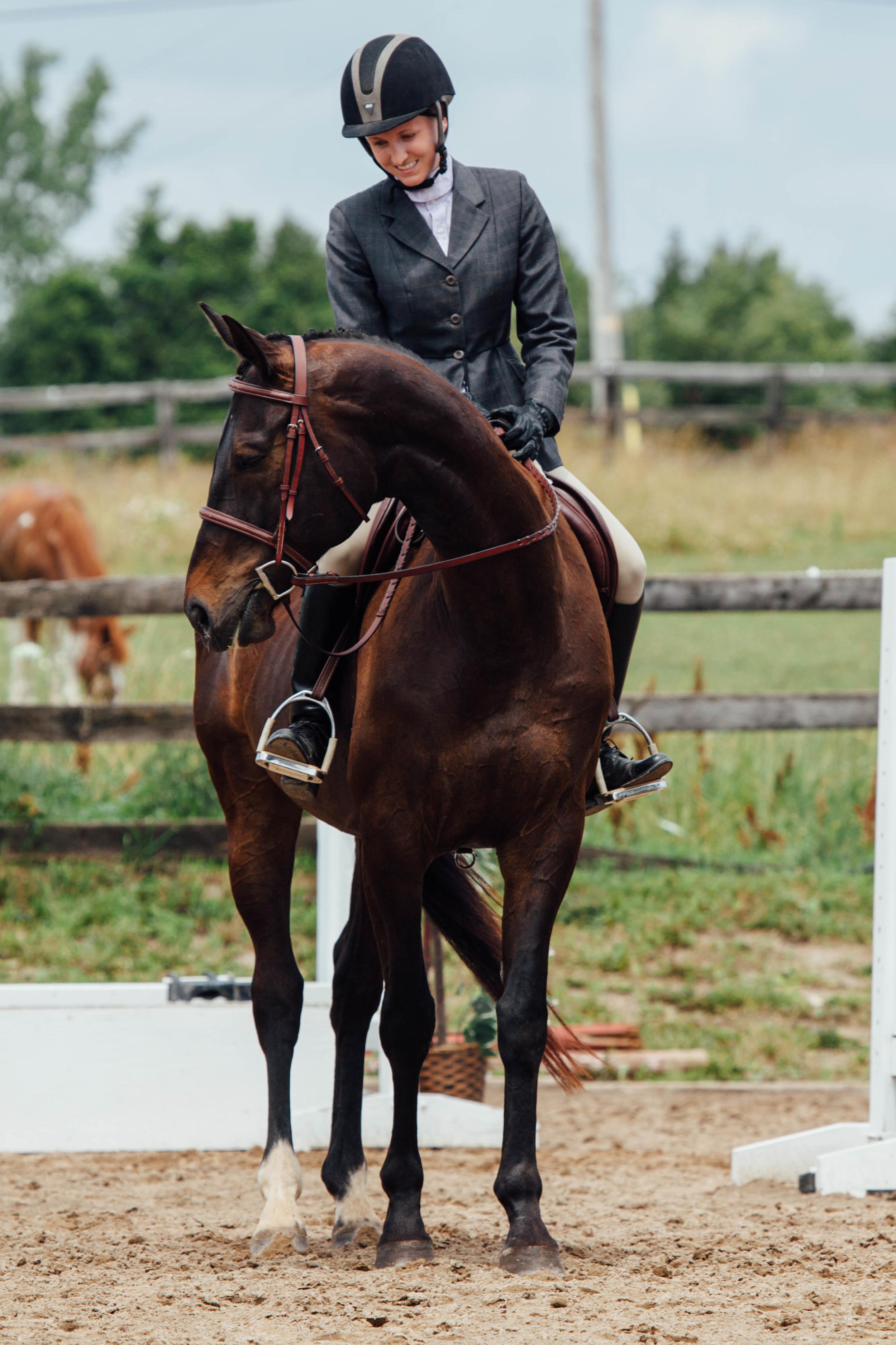 vsco edit horse show-10.jpg