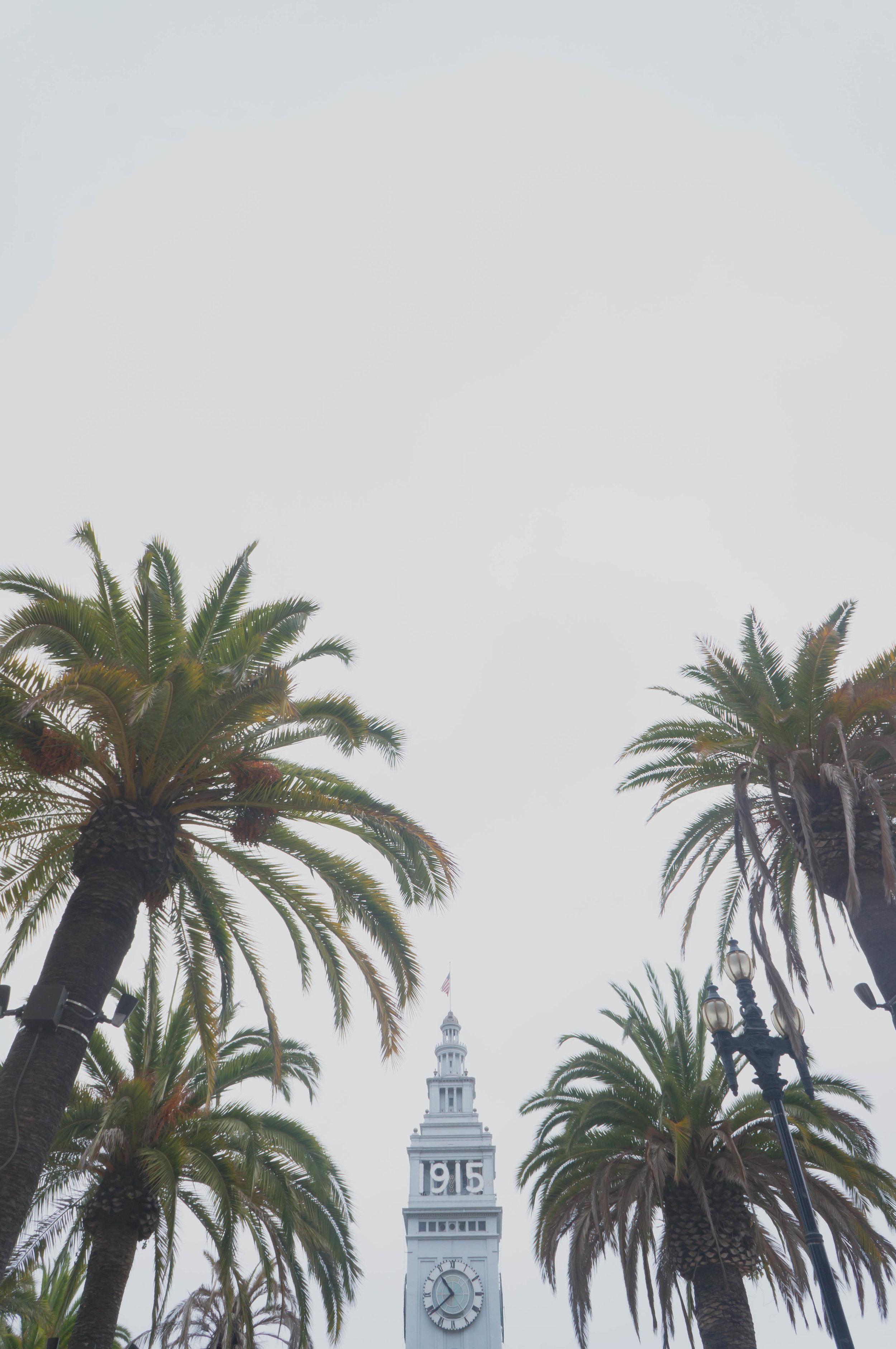 california-28.jpg