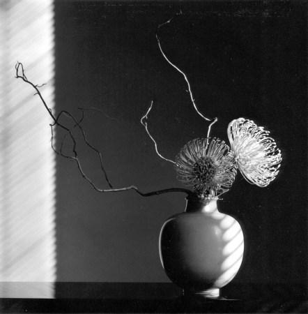 mapplethorpe_flower-arrangment-1986.jpg