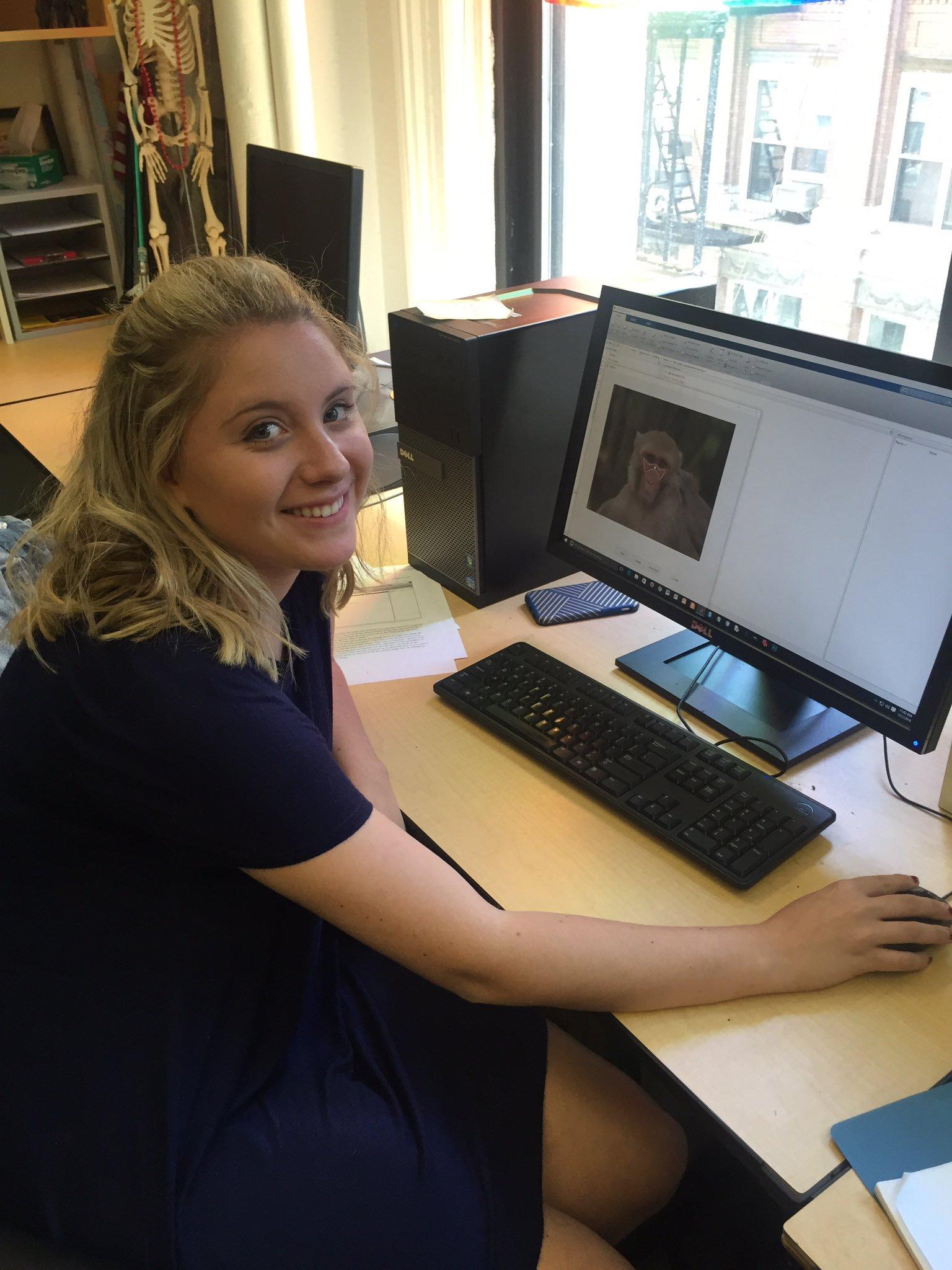 Flavia (undergraduate intern) measuring images of rhesus macaque faces.