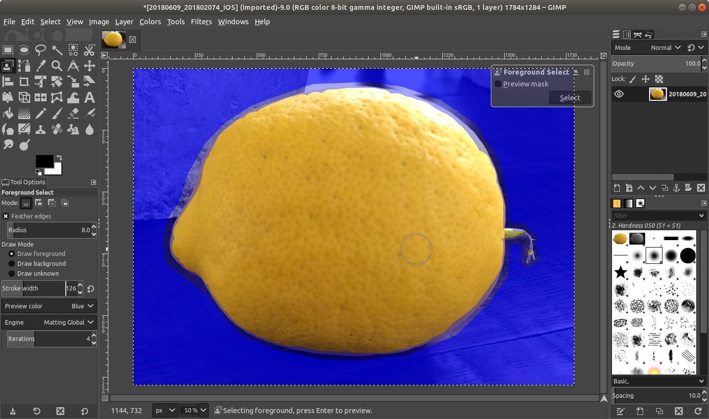 gimp_lemon_foregroundselected.png