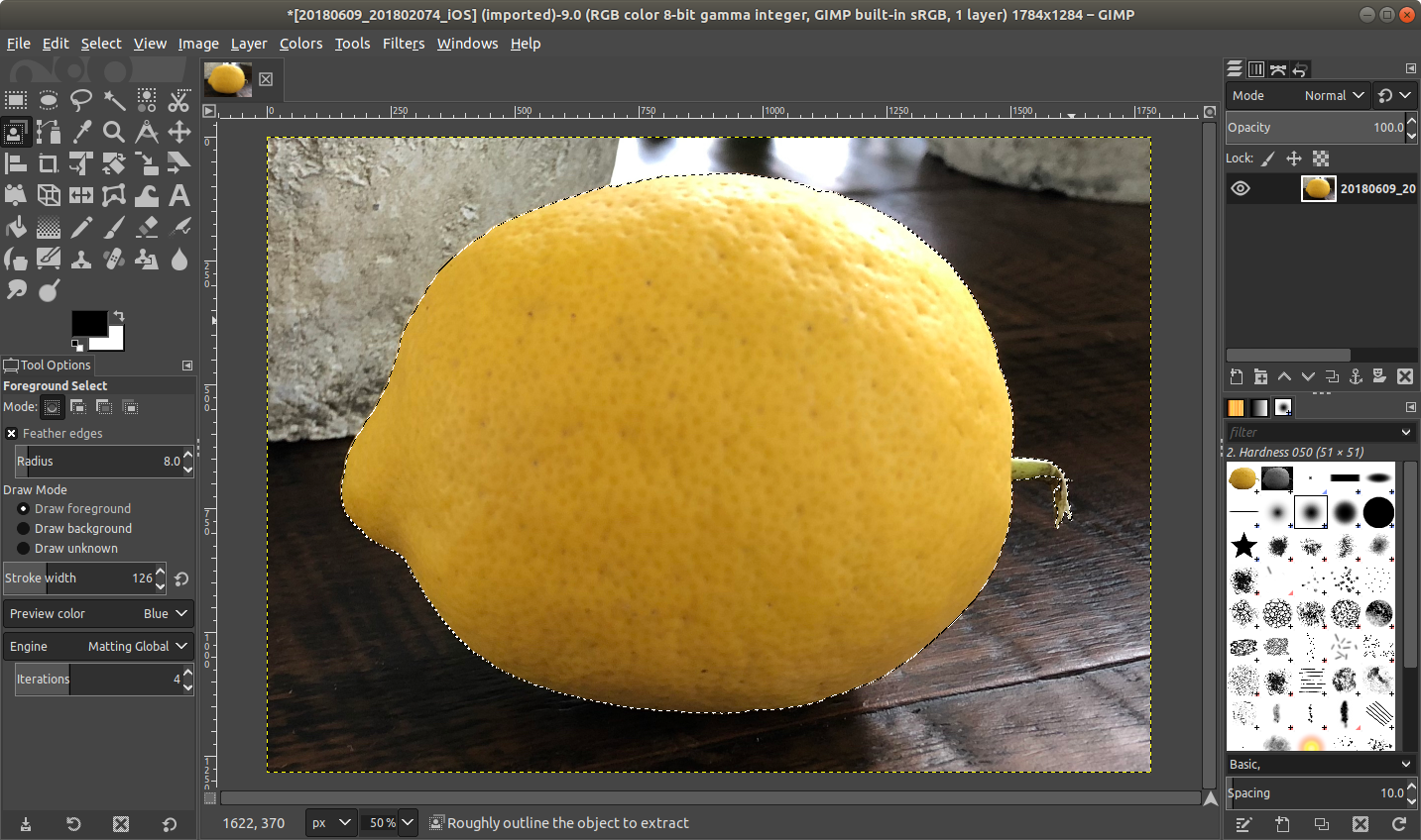 gimp_lemon_selected.png