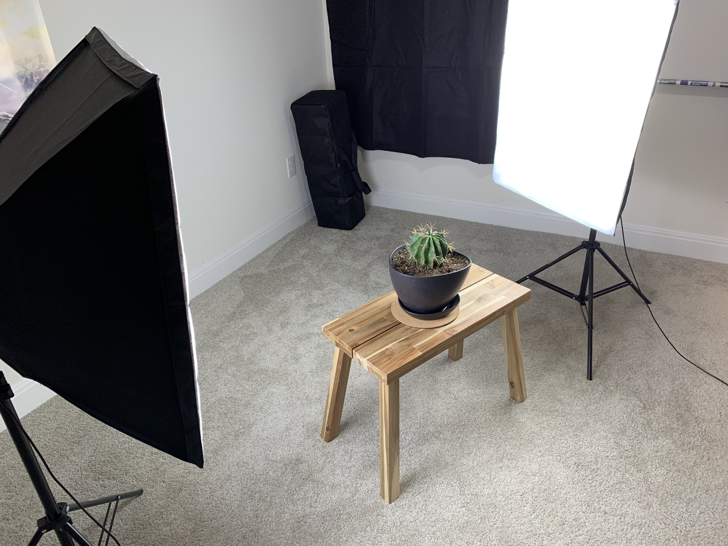 My photogrammetry lightbox setup