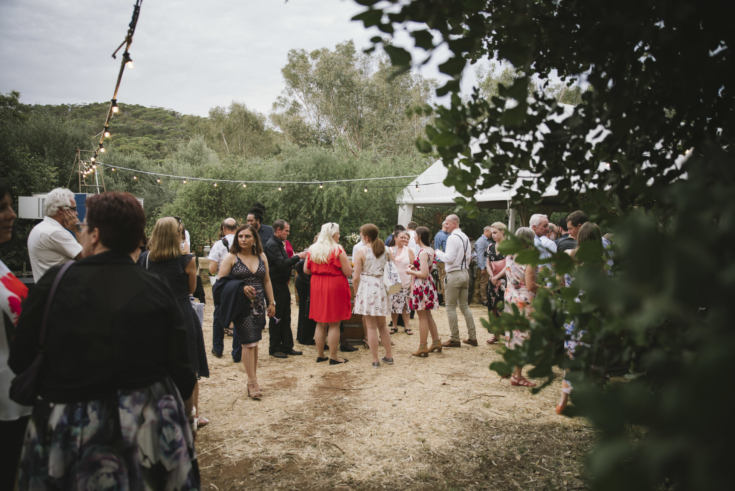 Avon Valley Toodyay Rustic Rural Festival Wedding  (73).jpg