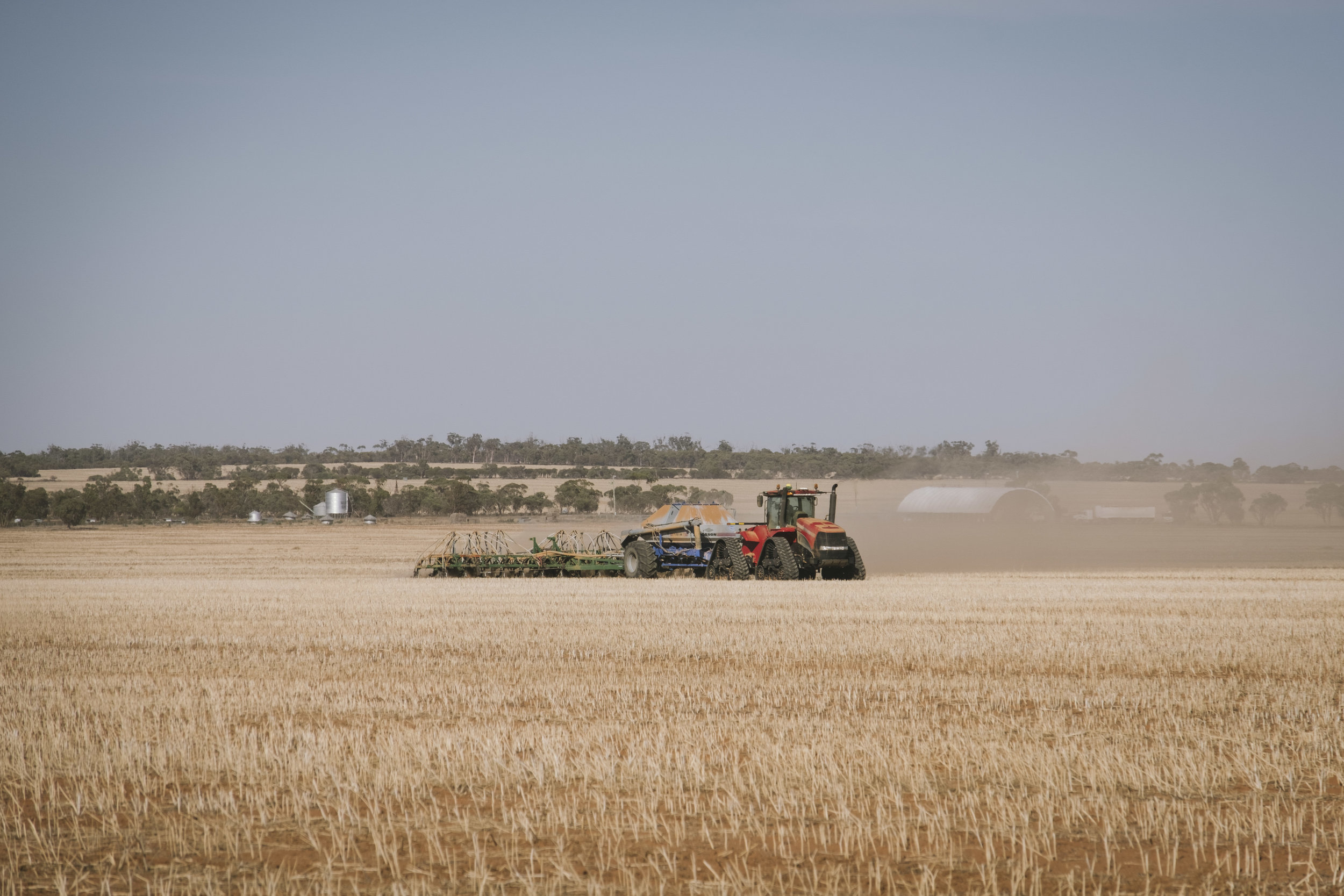 Angie Roe Photography Wheatbelt Rural Farm Landscape Seeding (1).jpg