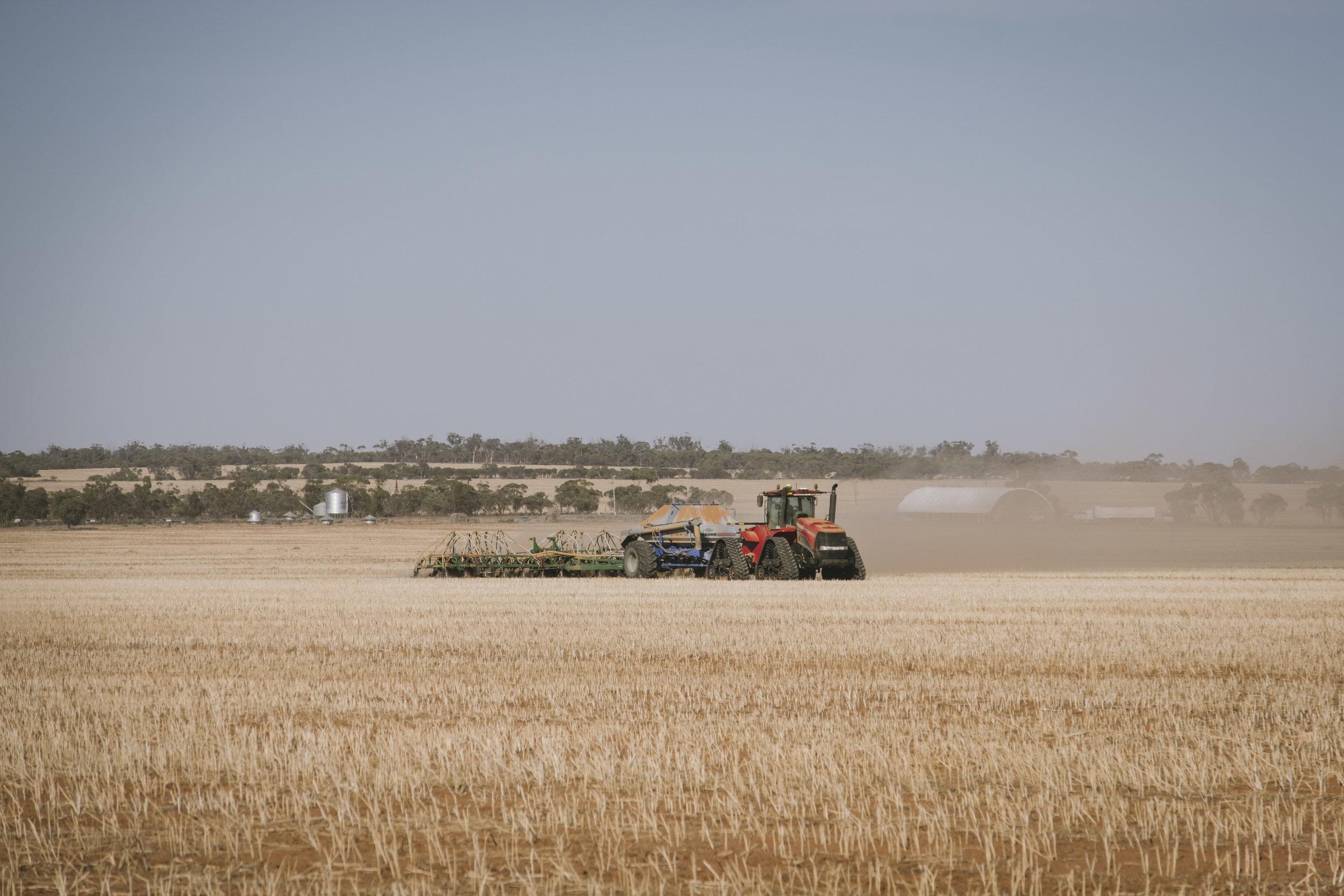 Angie Roe Photography Wheatbelt Rural Farm Landscape Seeding (1).jpg