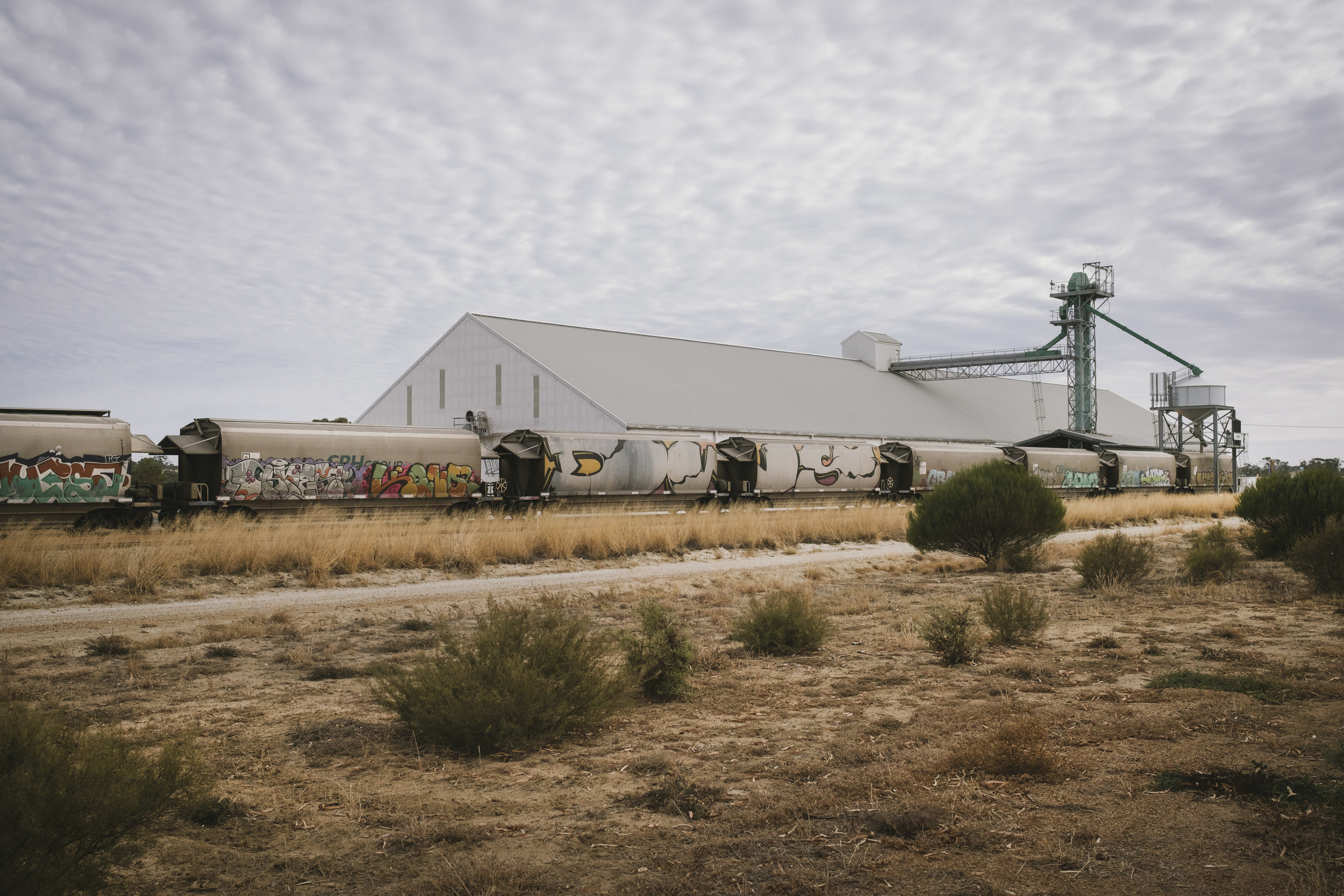 Angie Roe Photography Wheatbelt Rural Farm Landscape Seeding (4).jpg
