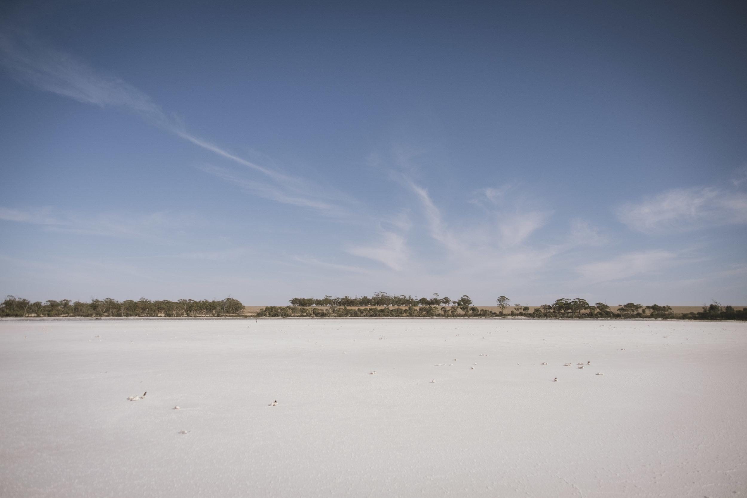 Angie Roe Photography Wheatbelt Rural Farm Landscape Seeding (7).jpg