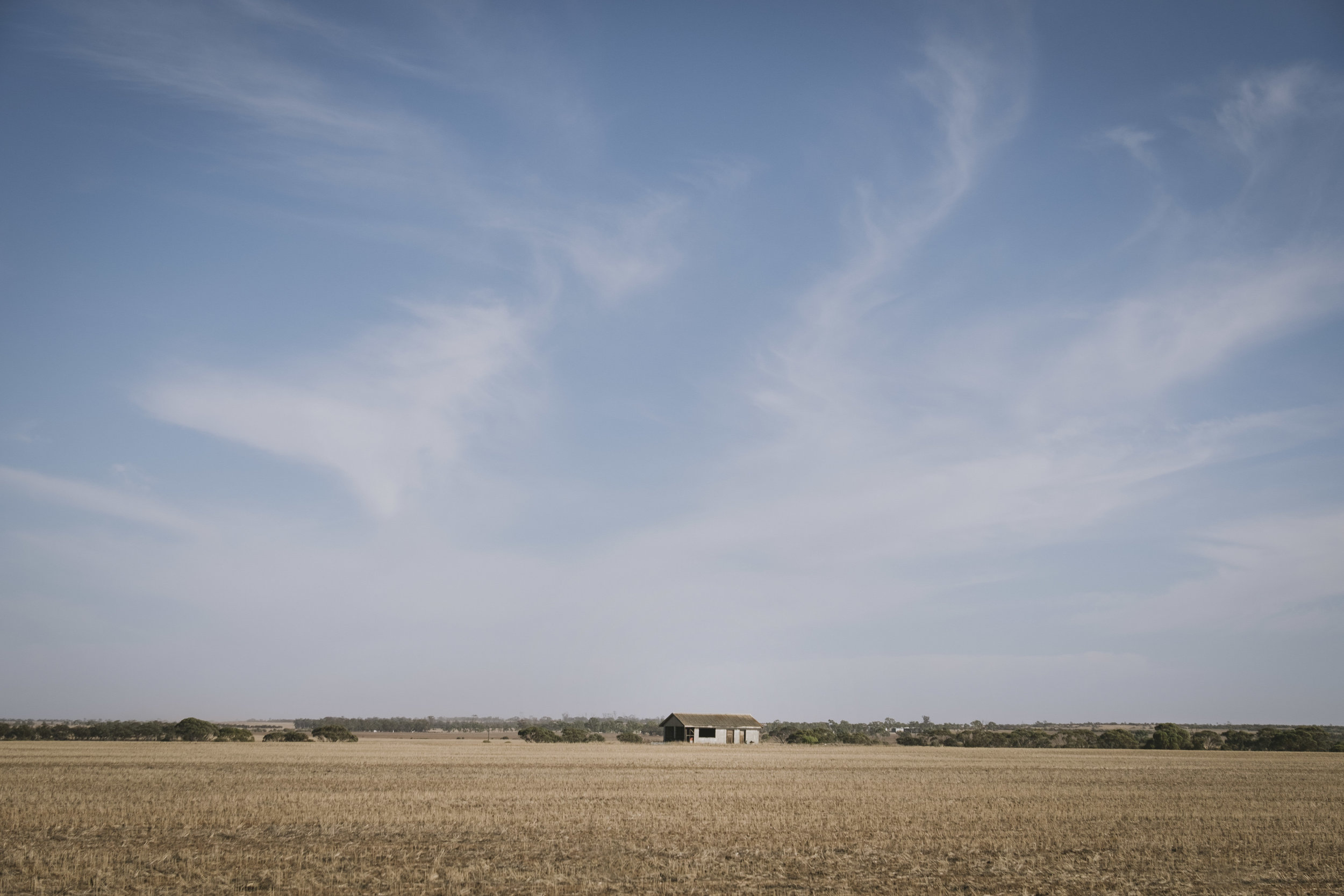 Angie Roe Photography Wheatbelt Rural Farm Landscape Seeding (8).jpg