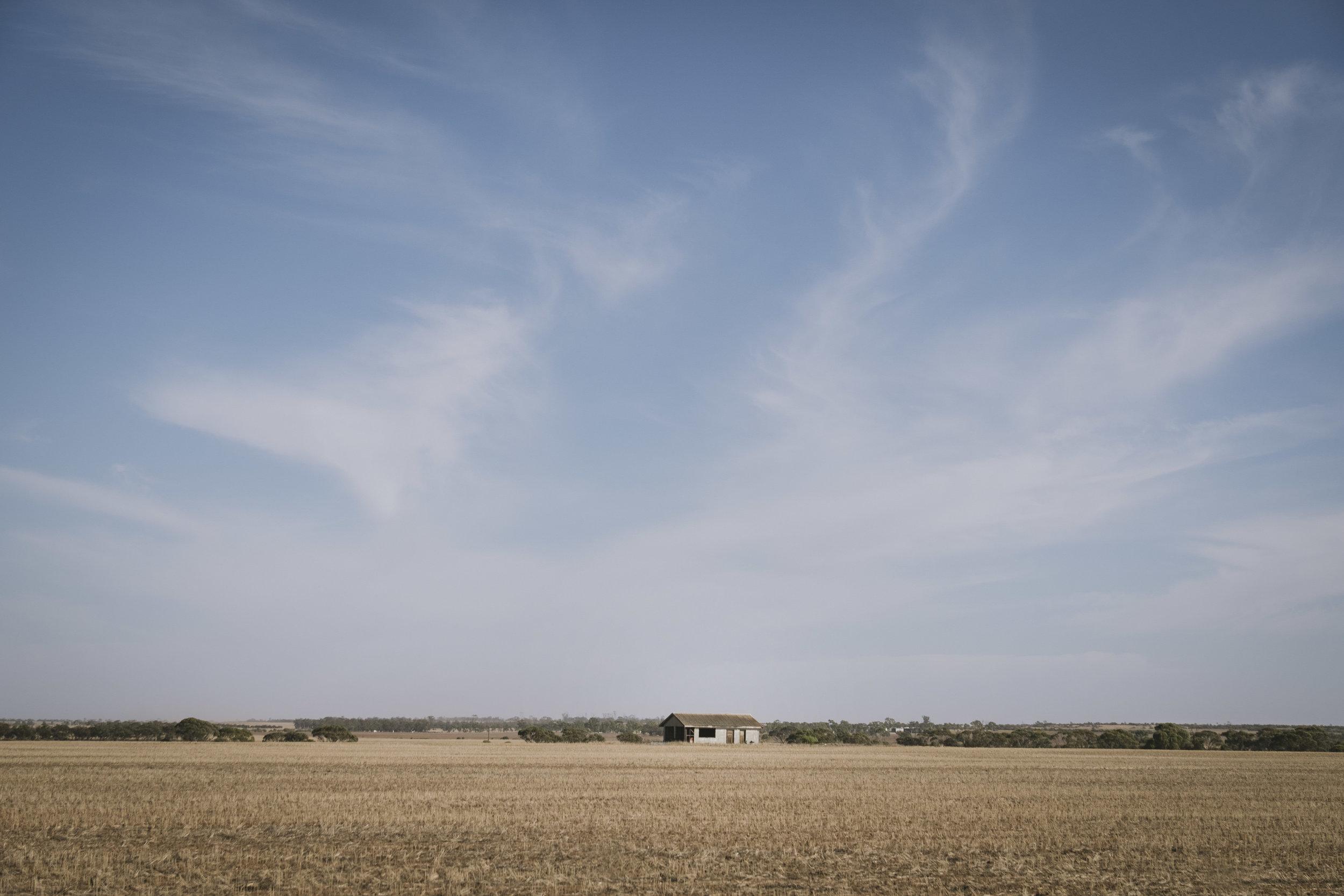 Angie Roe Photography Wheatbelt Rural Farm Landscape Seeding (8).jpg