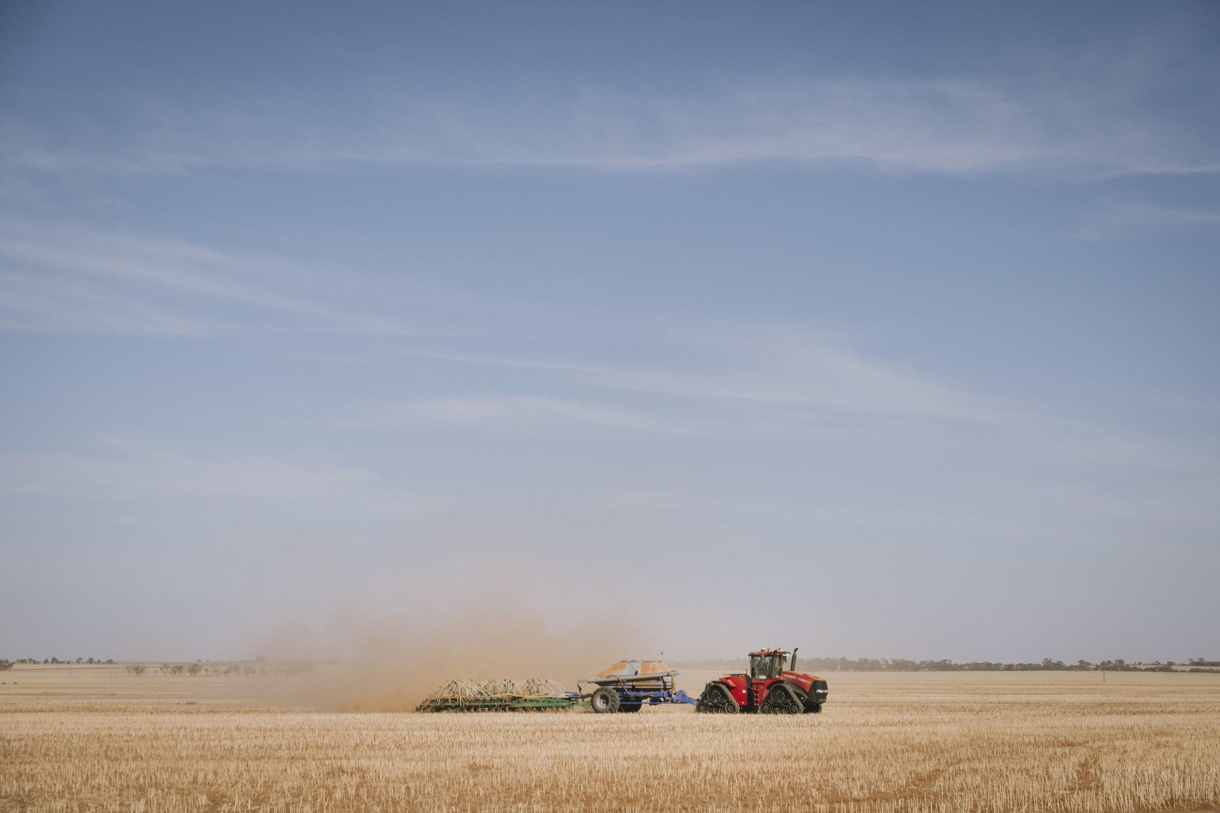 Angie Roe Photography Wheatbelt Rural Farm Landscape Seeding (10).jpg