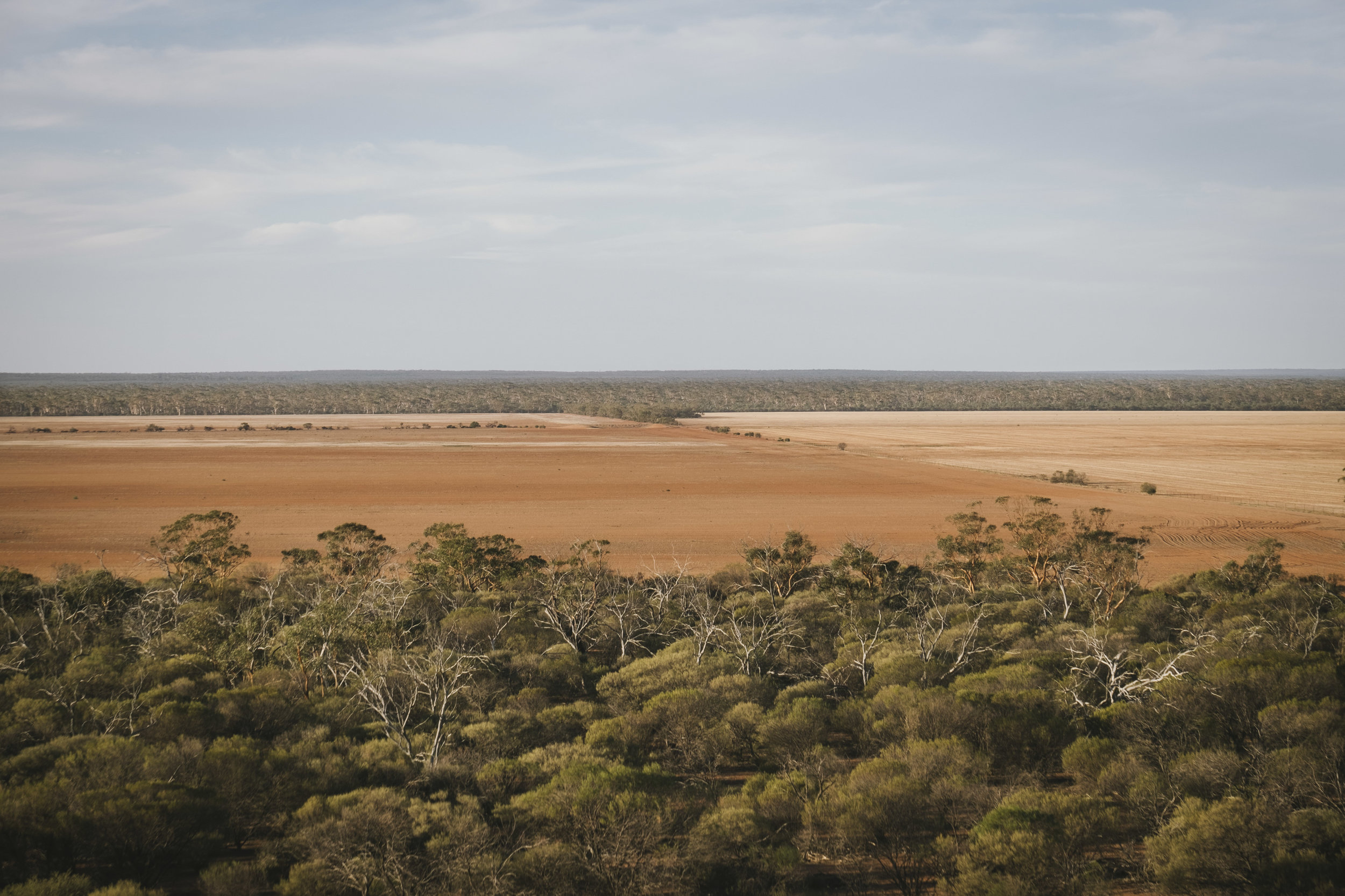 Angie Roe Photography Wheatbelt Rural Farm Landscape Seeding (16).jpg