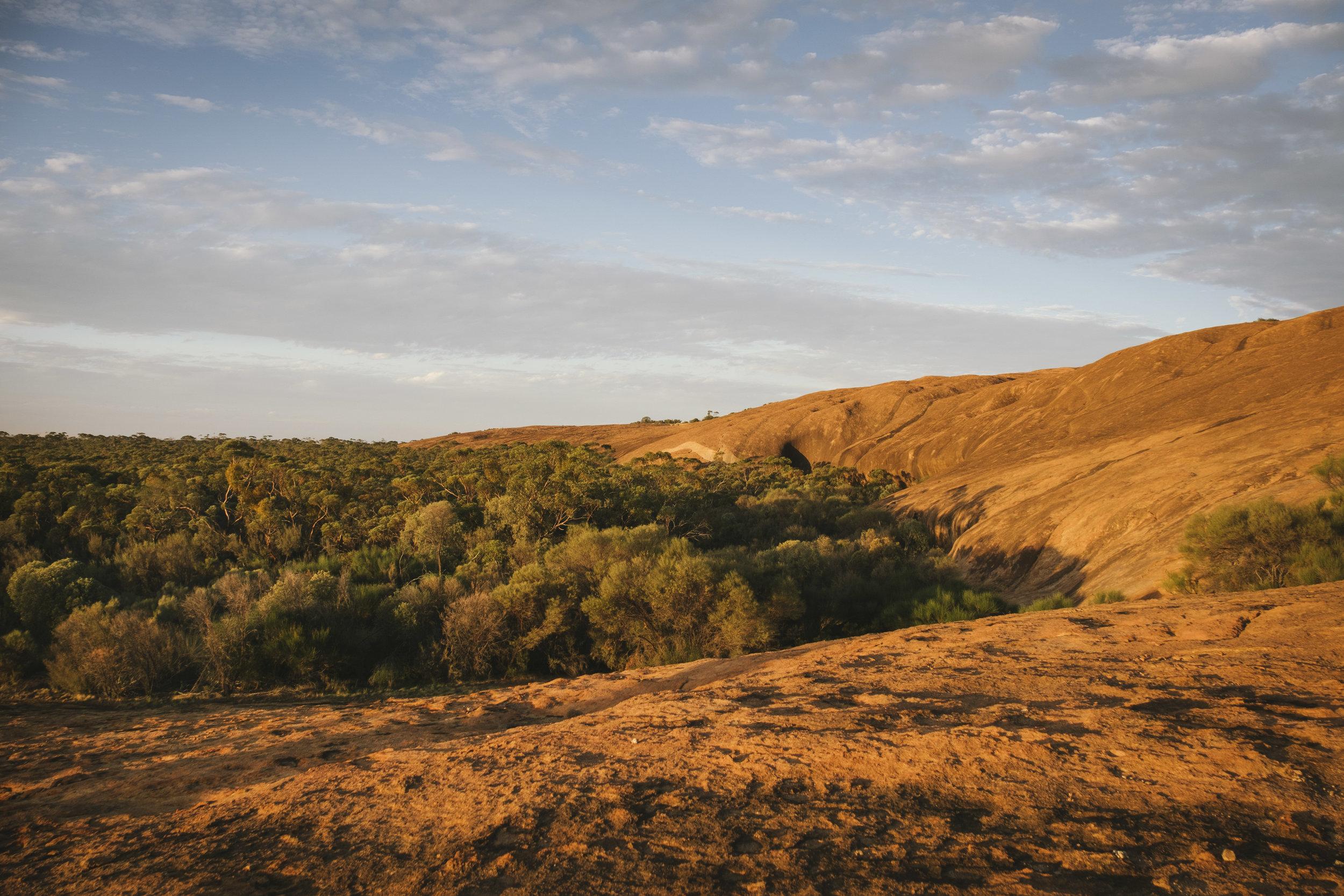 Angie Roe Photography Wheatbelt Rural Farm Landscape Seeding (23).jpg