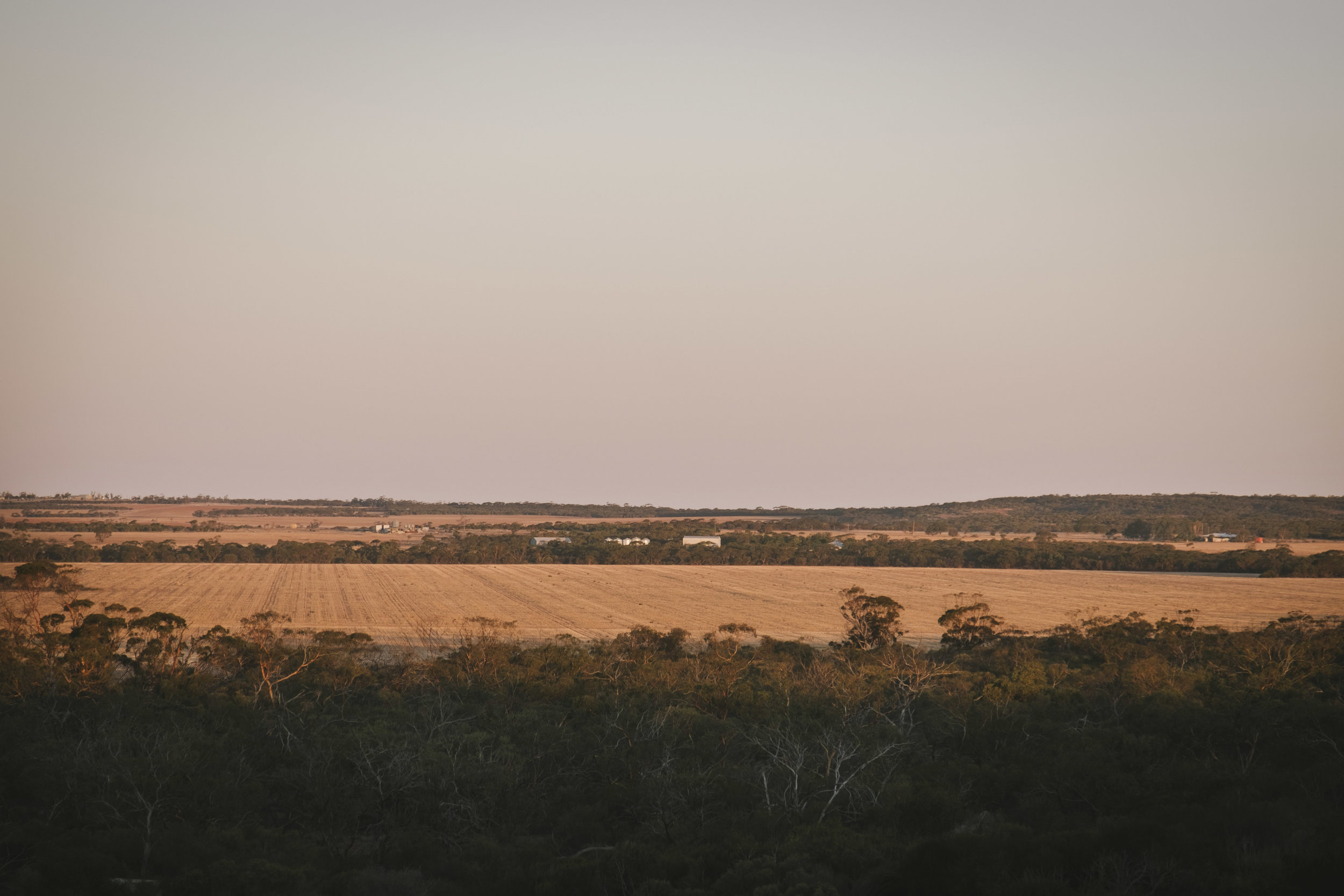 Angie Roe Photography Wheatbelt Rural Farm Landscape Seeding (25).jpg