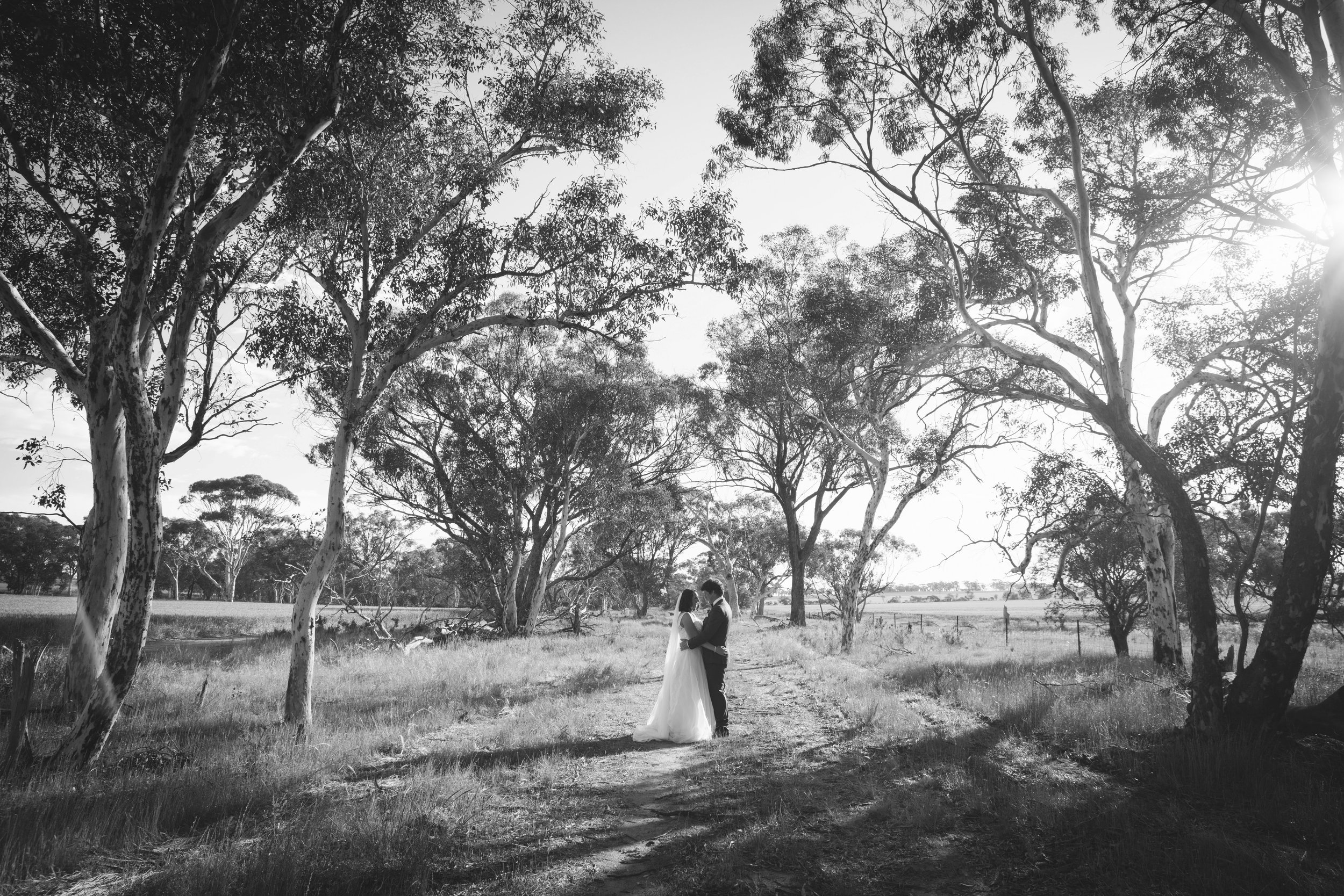 Angie Roe Photography Wheatbelt Avon Valley Farm Wedding (40).jpg