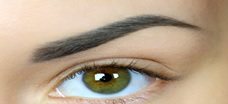 Permanent Makeup Brow (solid color)