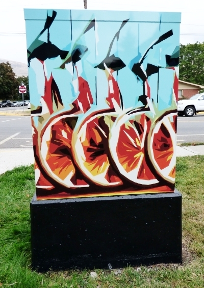 Bike-a-delic // Rachel Neal