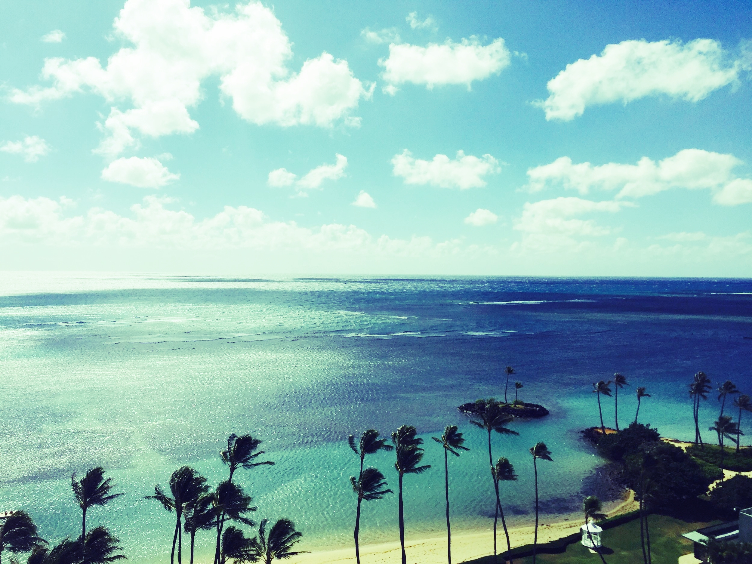 View from Kahala Hotel Room