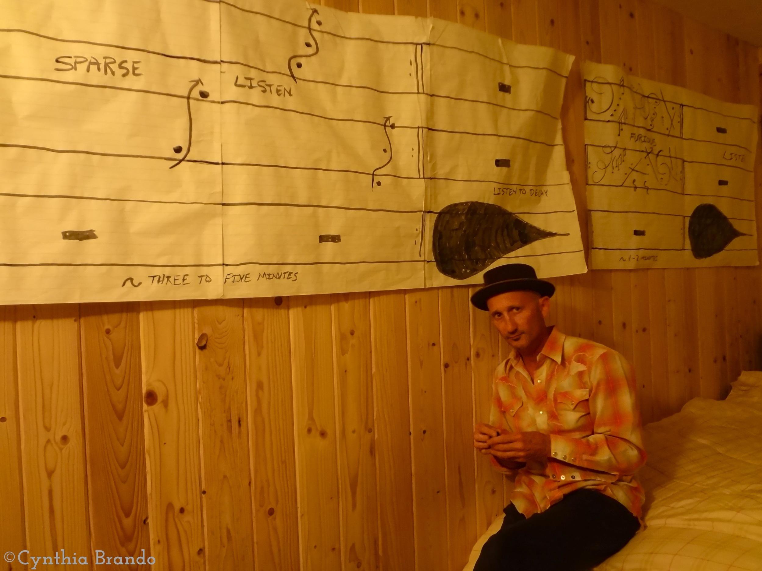 Musical Art Installations by  Lucio Menegon .