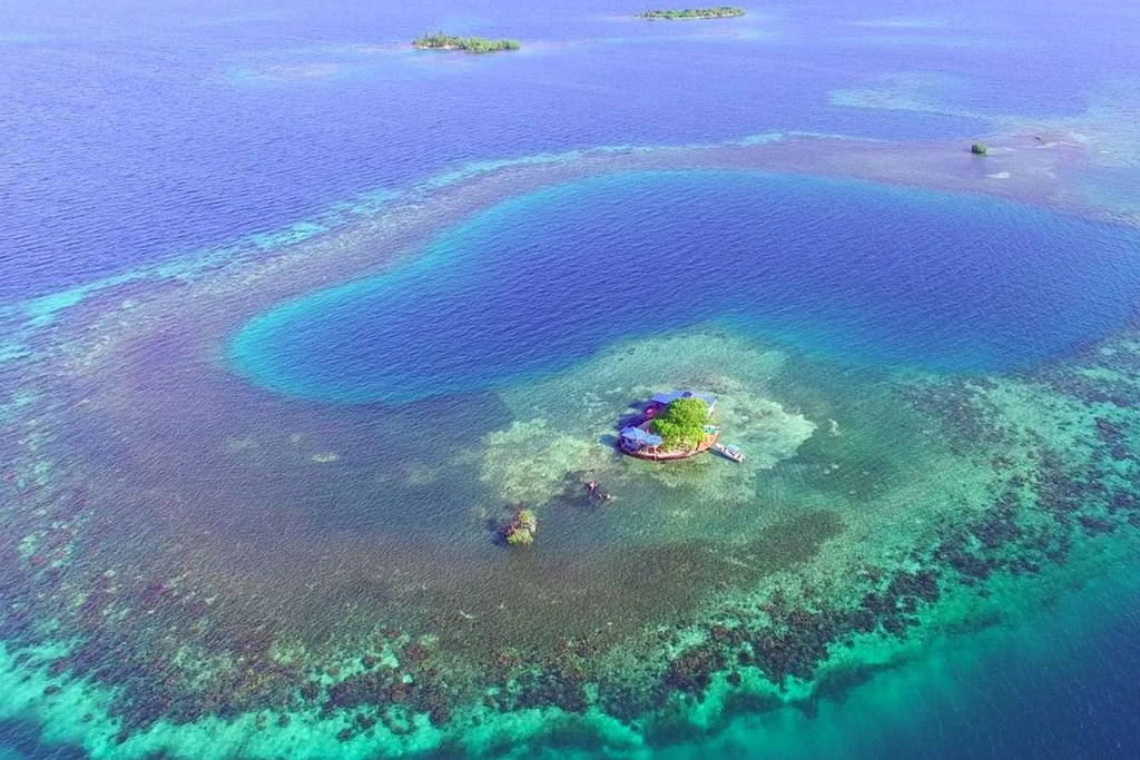 Bird Island, Belize