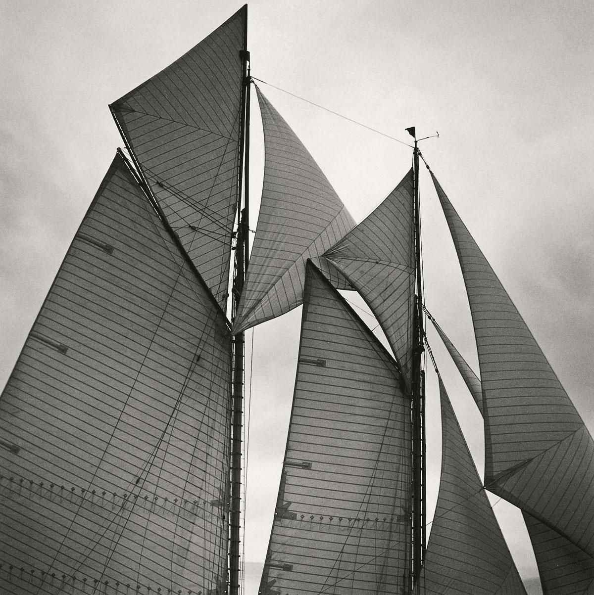 'Sails of Mariette', 1998. Michael Kahn