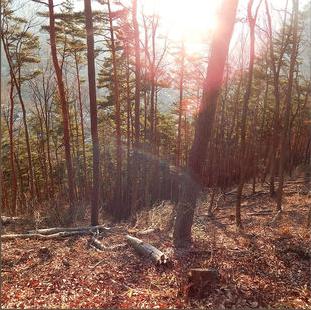 Glab - 'Sunsets Small' Single Mixed @ Studios 301 Mix Engineer: Dan Frizza