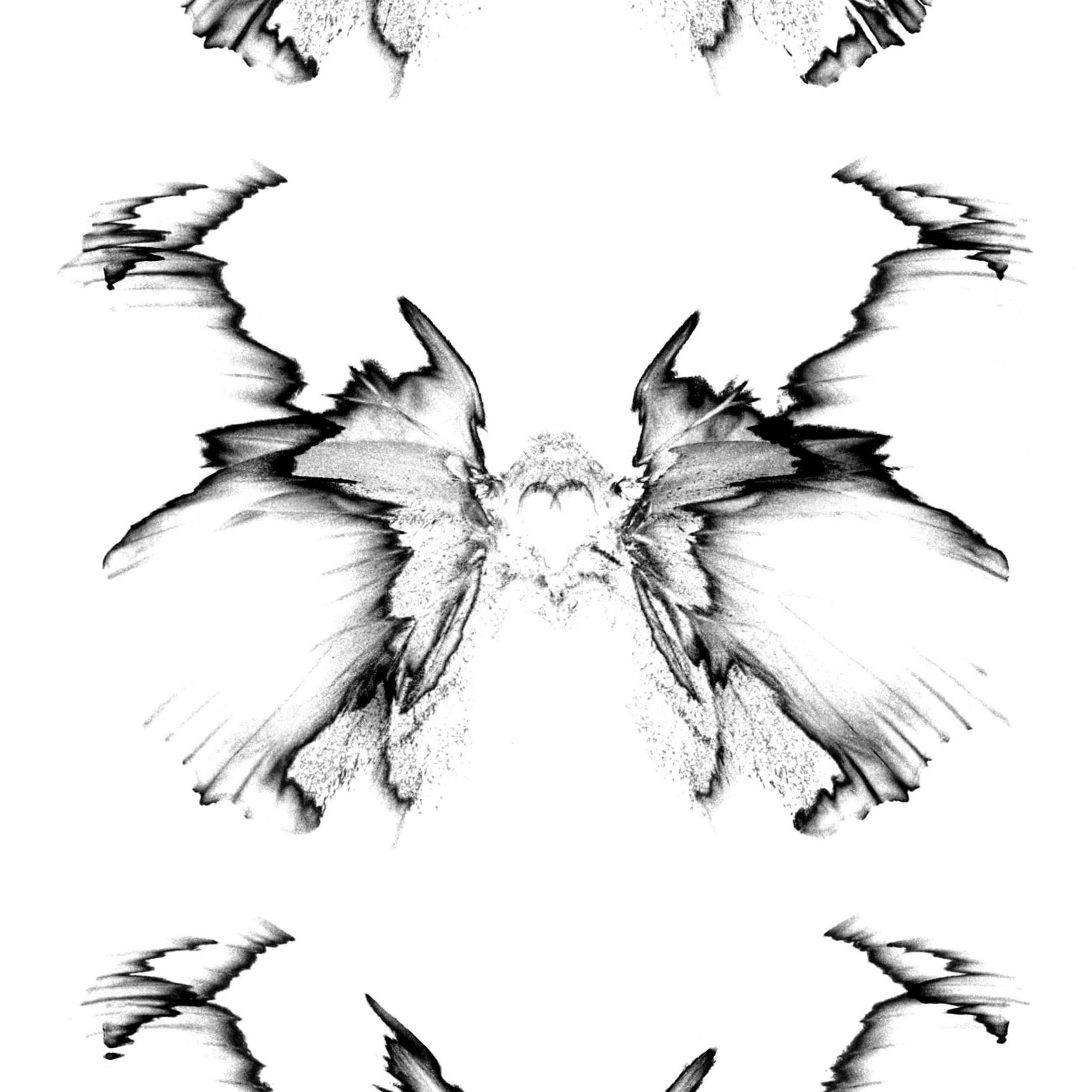 matscheko_enface_2x1_2880px.jpg