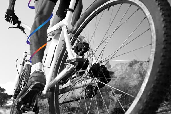Synergy_bike_front.jpg