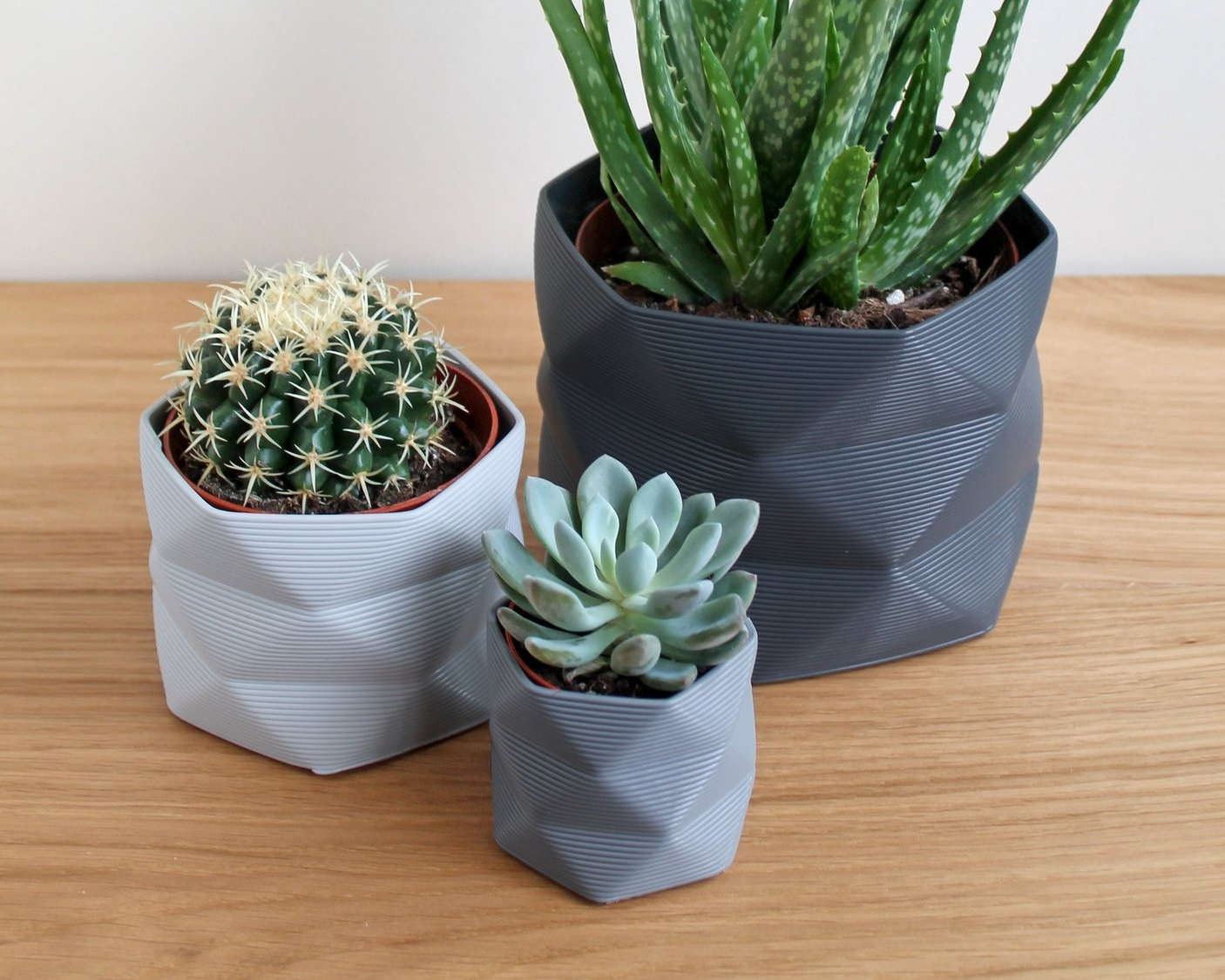 Trio+of+Printed+Pots.jpg