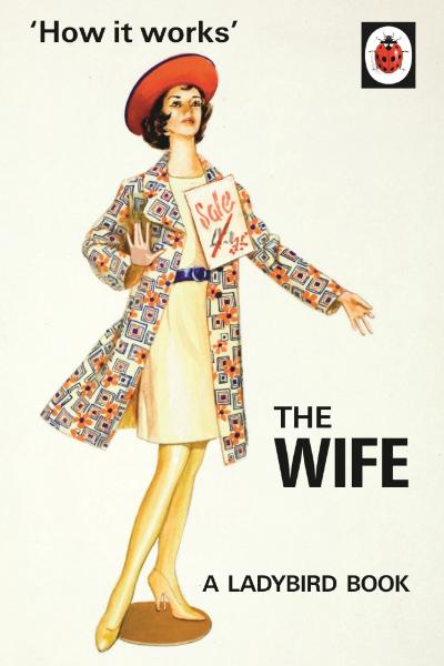 VINEGAR HILL, BATH - HOW IT WORKS, WIFE £6.99