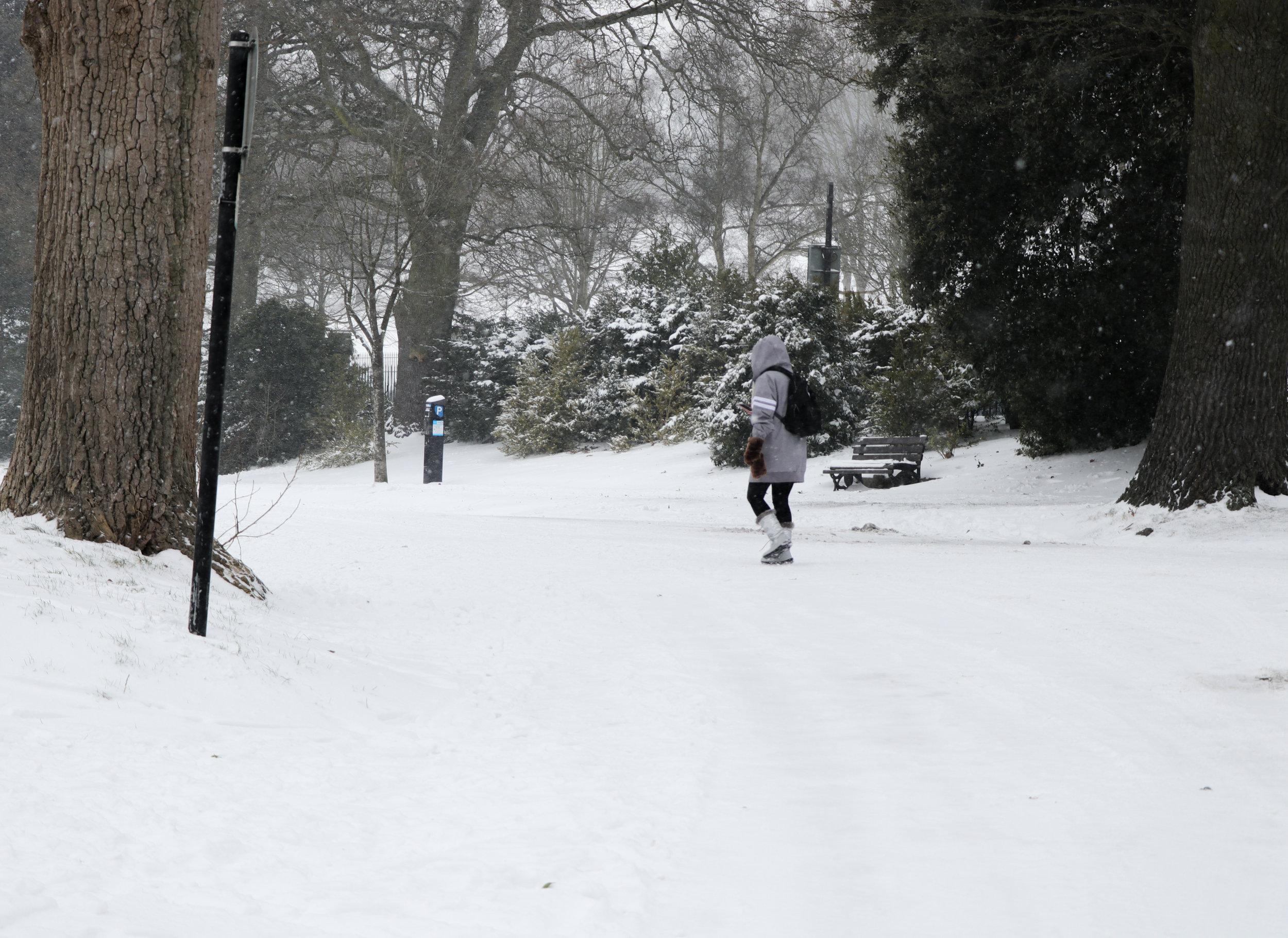 Royal Victoria Park Bath Winter Snow Storm.jpg