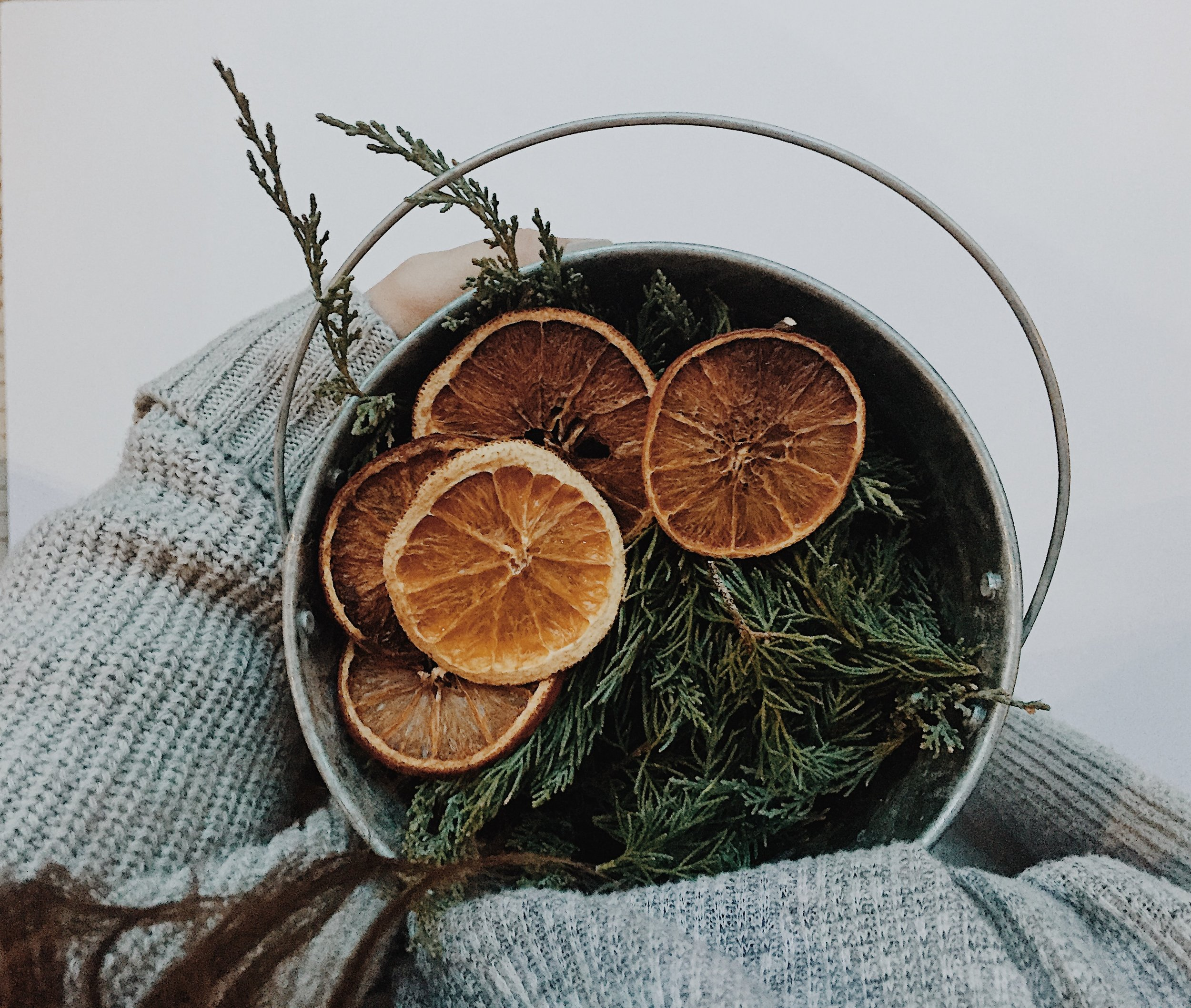 Gathering Supplies for your garland is simple. Find a legal or public place to trim cedar, gather a few pieces (not much is needed).  Purchase orange slices from your local grocer.  Some groceries also sell holiday greenery during December.