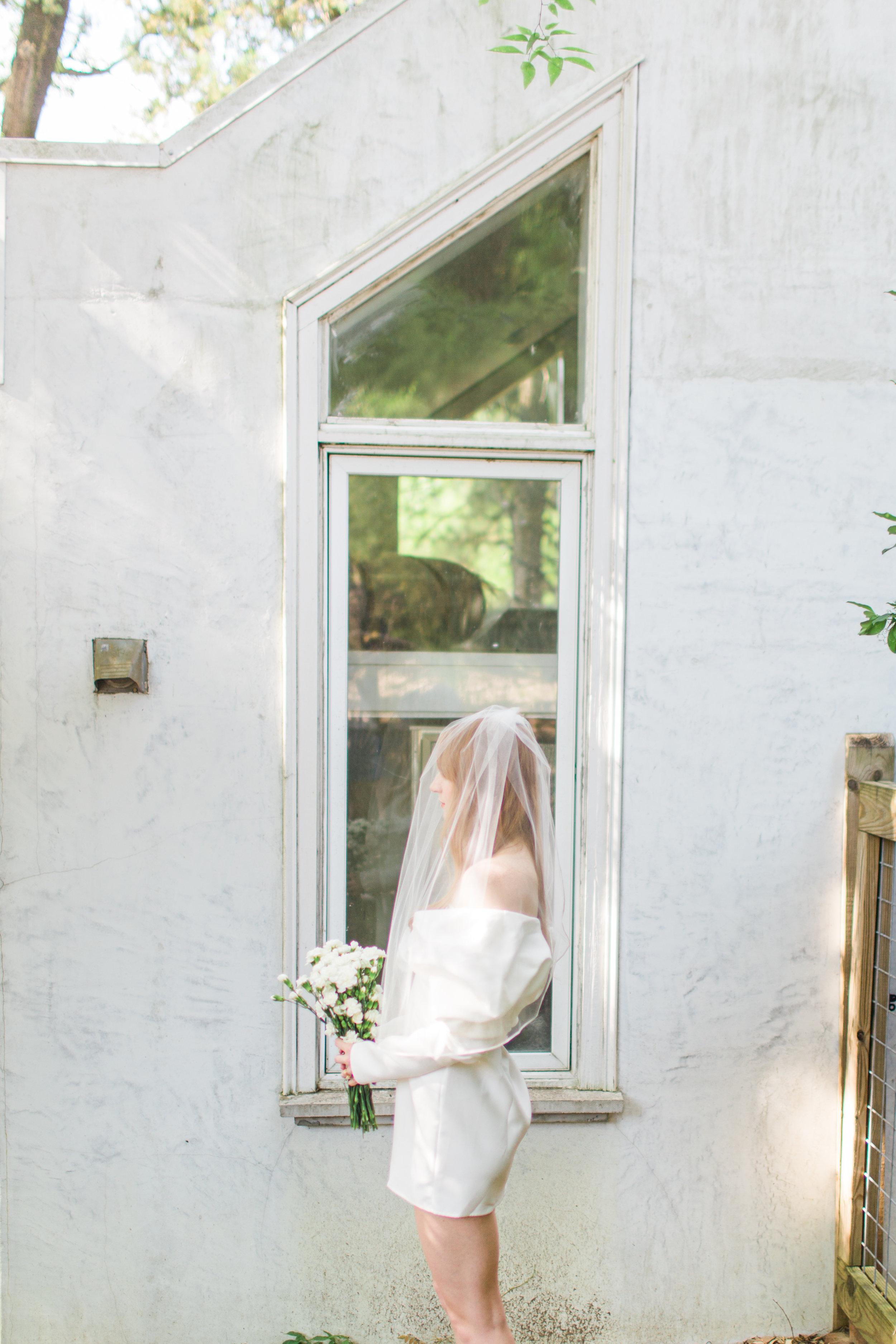 Gabriella Dress (GM) / Veil (It's a Date)