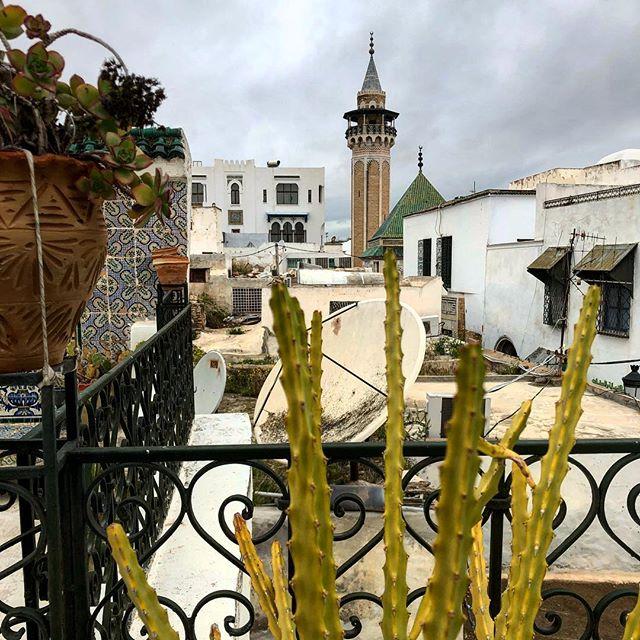 Vue de la terrasse de Eddar  #eddar #tunis #tunisie #afrique #vue #terrasse #incroyable #souks #tapis #artisanats #😍